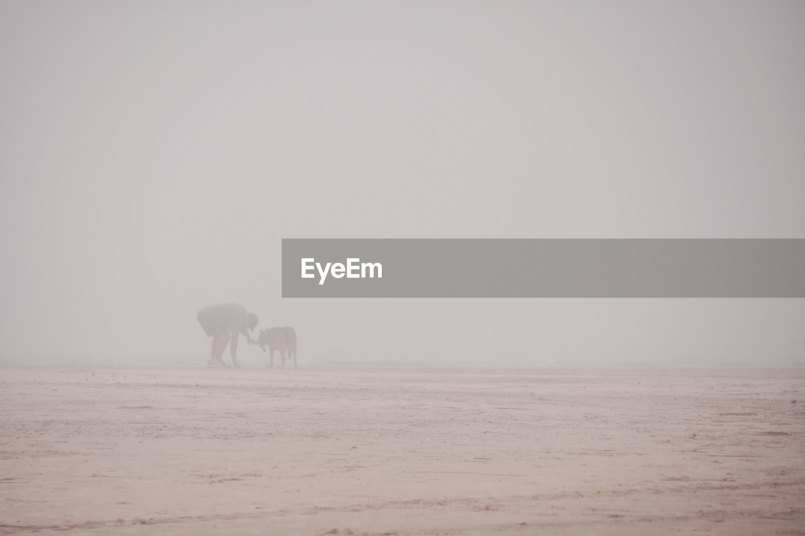 Silhouette man with dog standing on field against sky during foggy weather