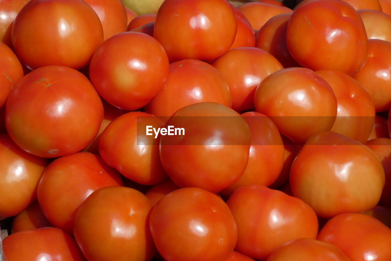 healthy eating, food, food and drink, tomato, wellbeing, large group of objects, freshness, vegetable, red, fruit, still life, full frame, backgrounds, no people, abundance, close-up, for sale, high angle view, indoors, market, ripe, temptation, vegetarian food