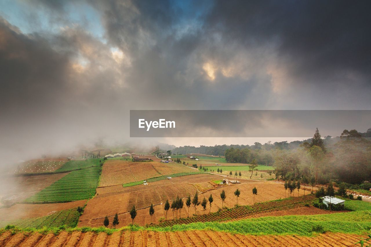 AGRICULTURAL FIELD AGAINST SKY