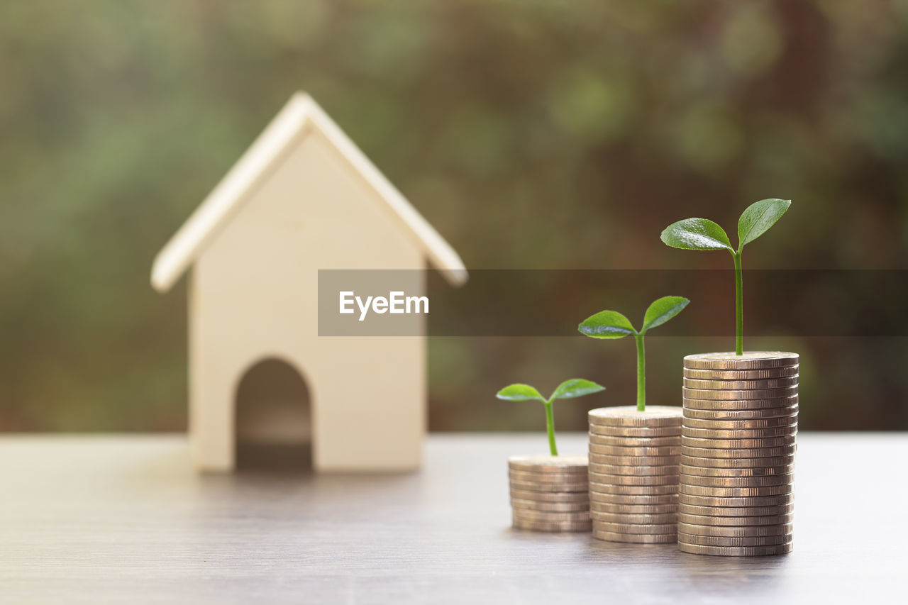 finance, wealth, growth, investment, currency, savings, coin, nature, plant, business, stack, no people, leaf, beginnings, plant part, development, focus on foreground, success, architecture, close-up, small, economy