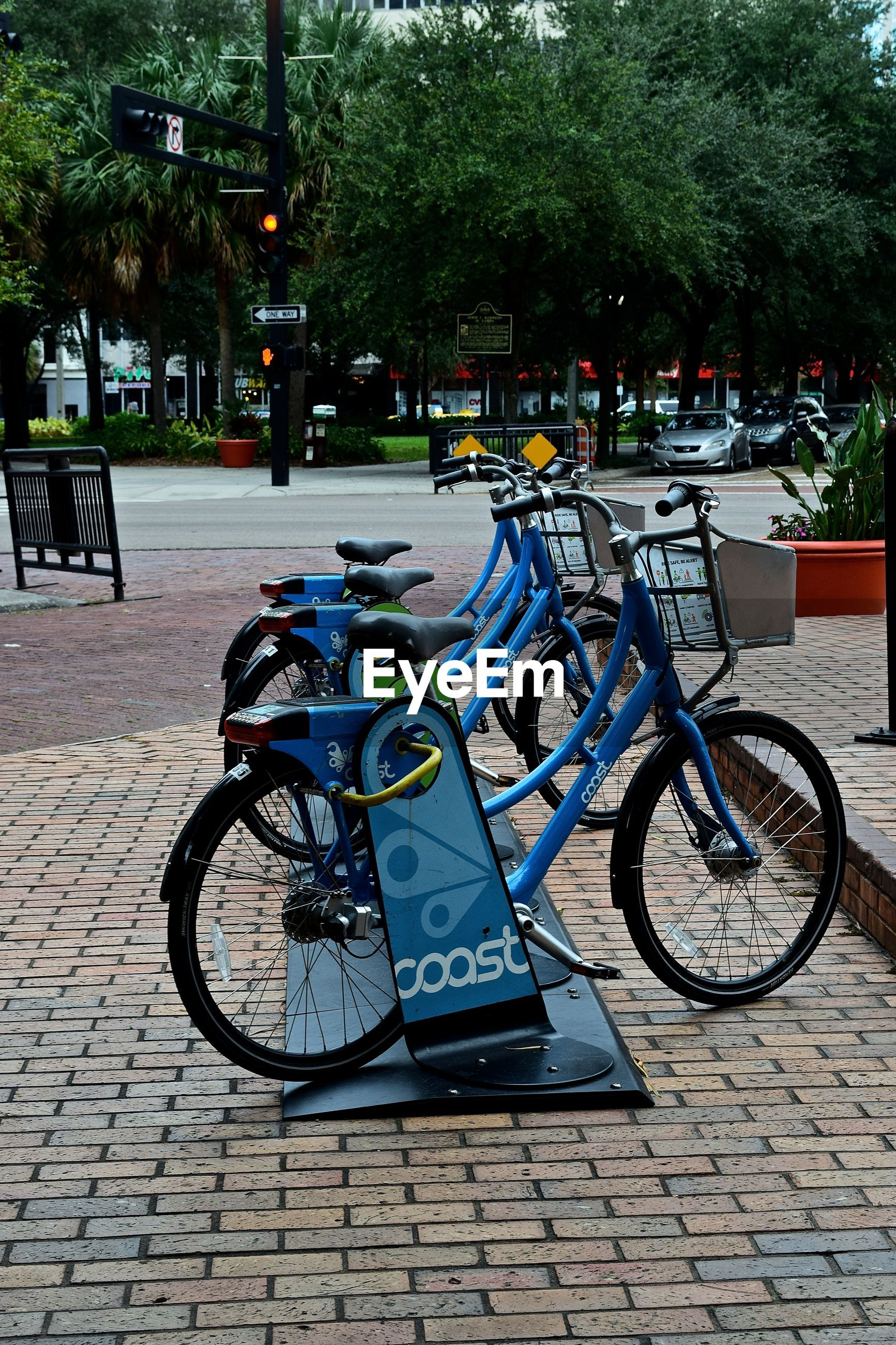 bicycle, mode of transport, tree, transportation, outdoors, land vehicle, city, no people, cycling, stationary, day, bicycle rack, nature