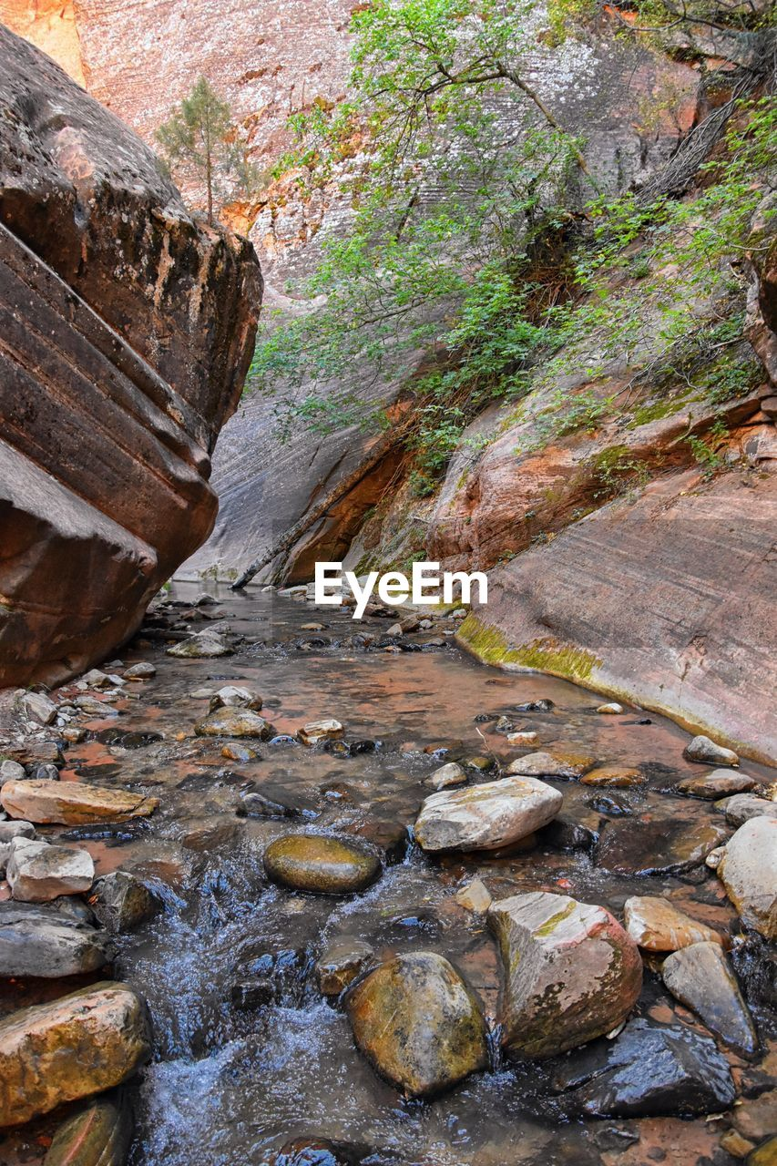rock, rock - object, solid, rock formation, no people, land, nature, day, scenics - nature, beauty in nature, non-urban scene, tranquility, plant, water, tree, flowing water, tranquil scene, geology, stream - flowing water, outdoors, flowing, eroded, formation