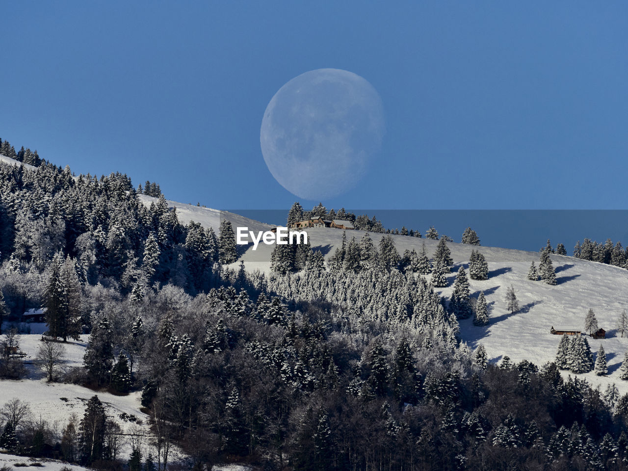 sky, tree, plant, beauty in nature, moon, scenics - nature, tranquil scene, tranquility, nature, cold temperature, snow, mountain, no people, winter, growth, clear sky, full moon, non-urban scene, land, outdoors, astronomy, snowcapped mountain, planetary moon
