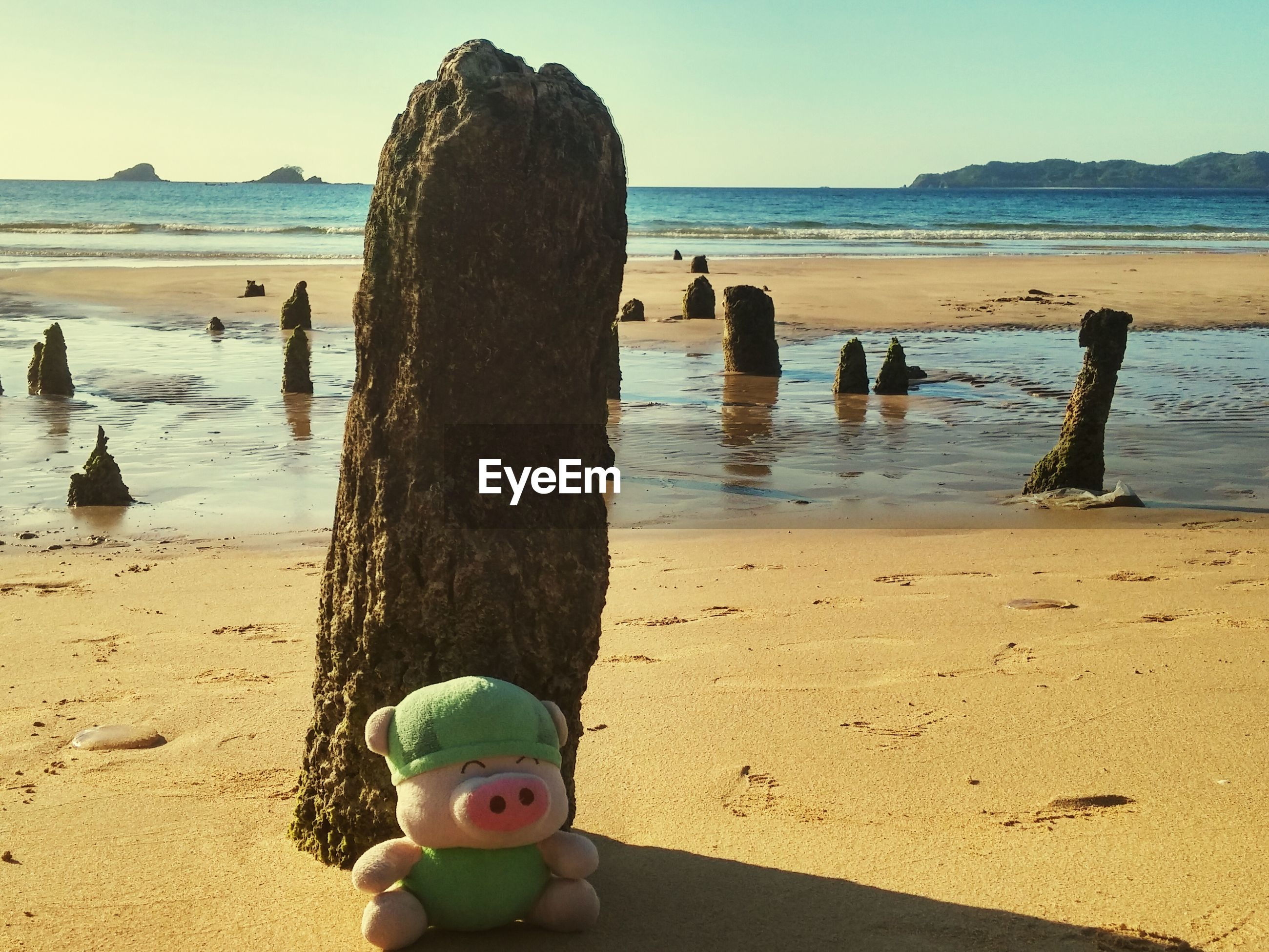 Stuffed toy on sand at beach