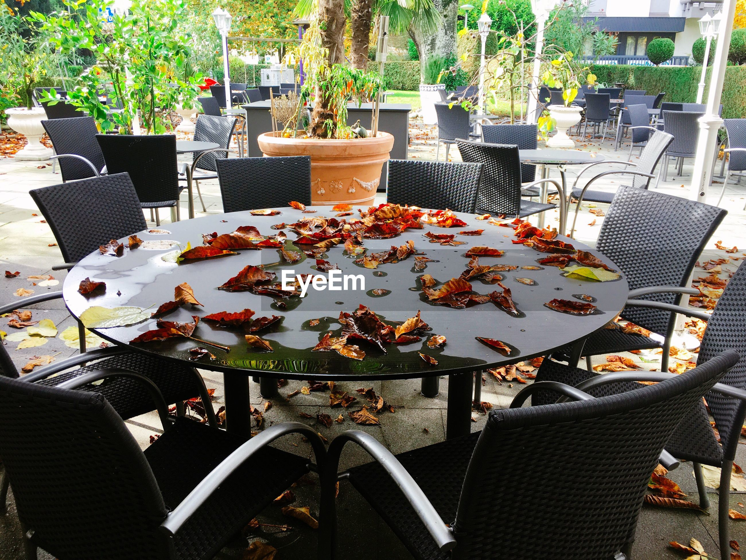 Fallen autumn leaves on wet table amidst chairs at outdoor restaurant