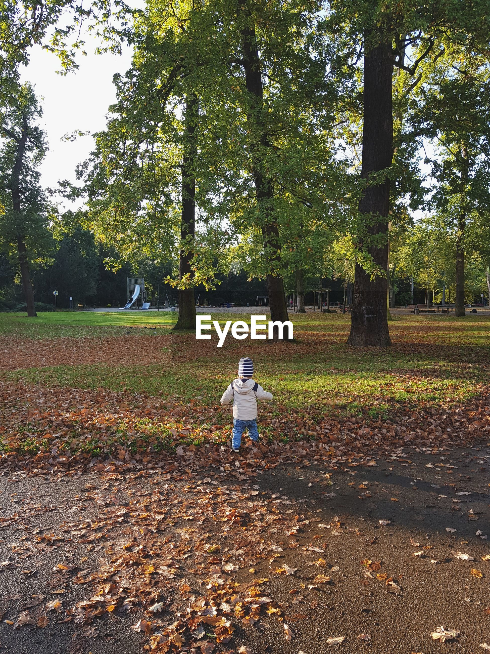 Rear view of child walking in park during autumn