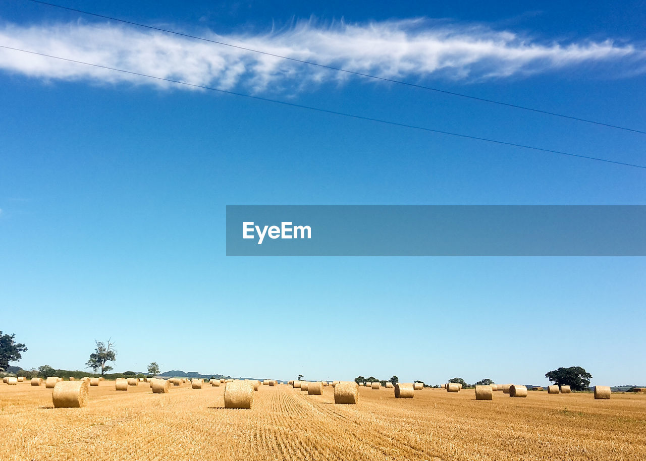 Hay Bales On Cultivated Farm Land Against Blue Sky