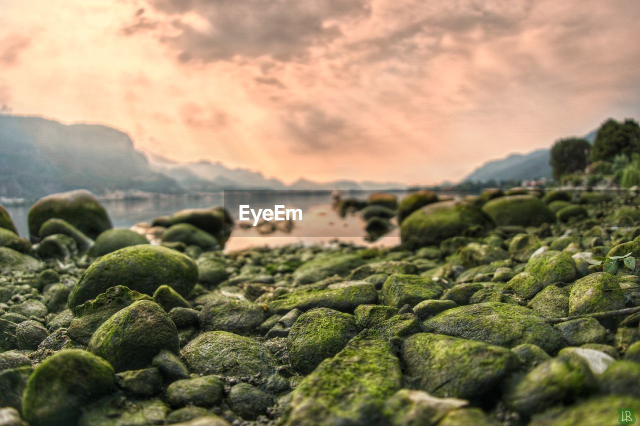 sky, no people, selective focus, nature, green color, sunset, land, beauty in nature, cloud - sky, food and drink, outdoors, rock, tranquility, food, scenics - nature, abundance, moss, solid, vegetable, environment, pebble