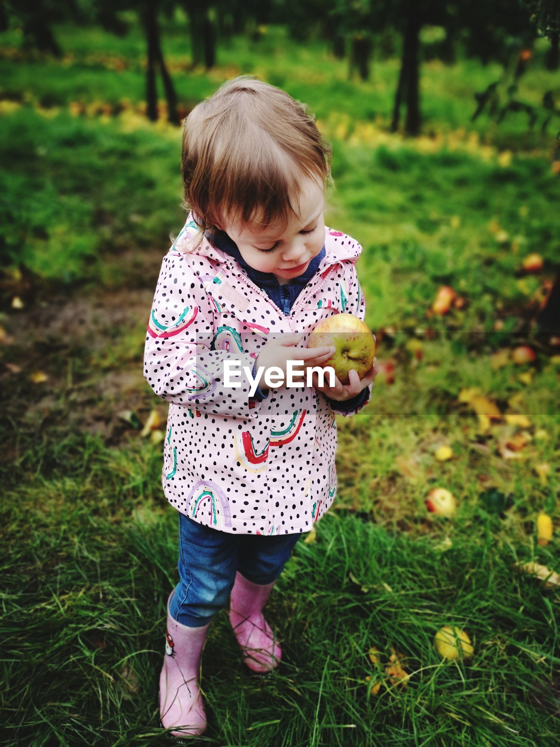 Toddler in apple orchard