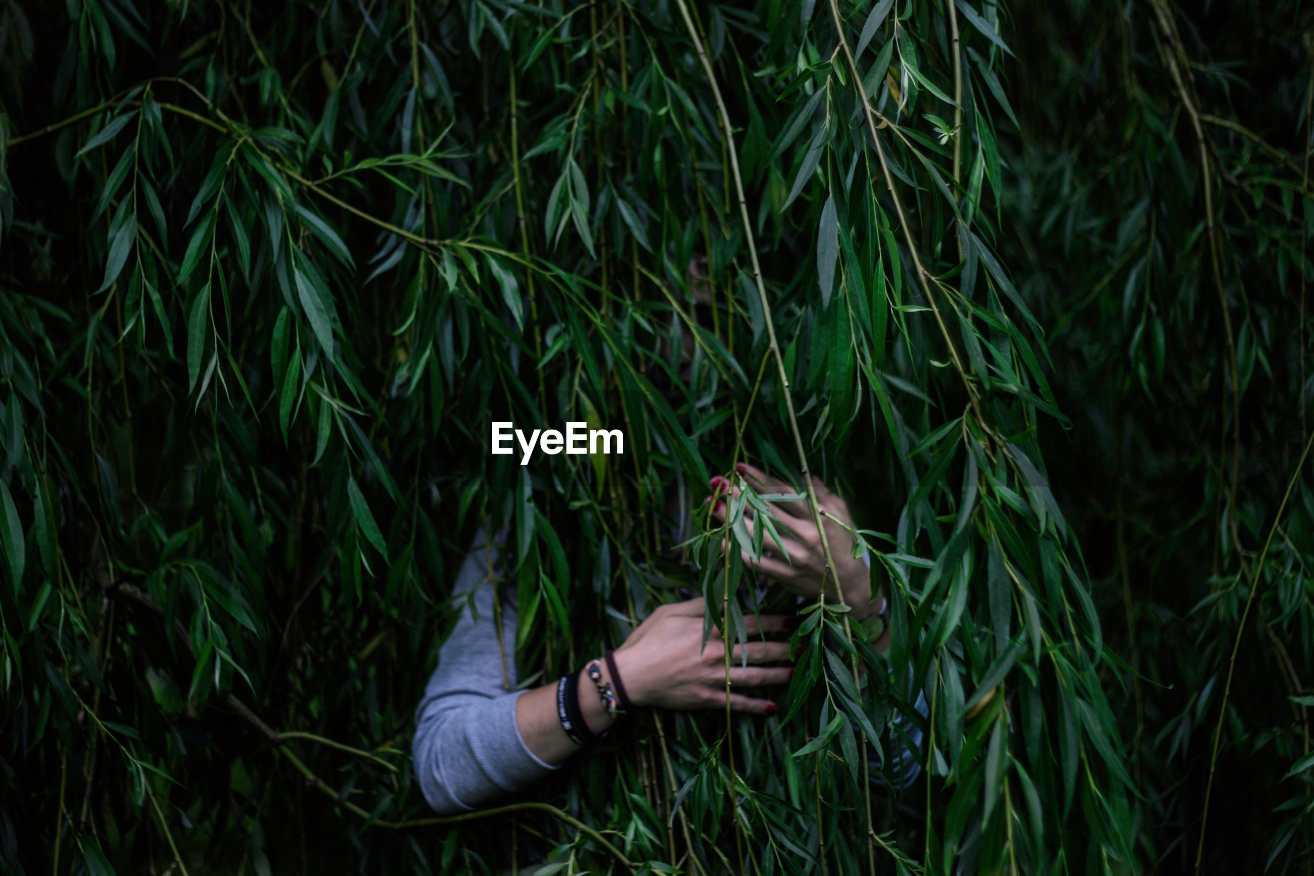 Woman hiding behind branches