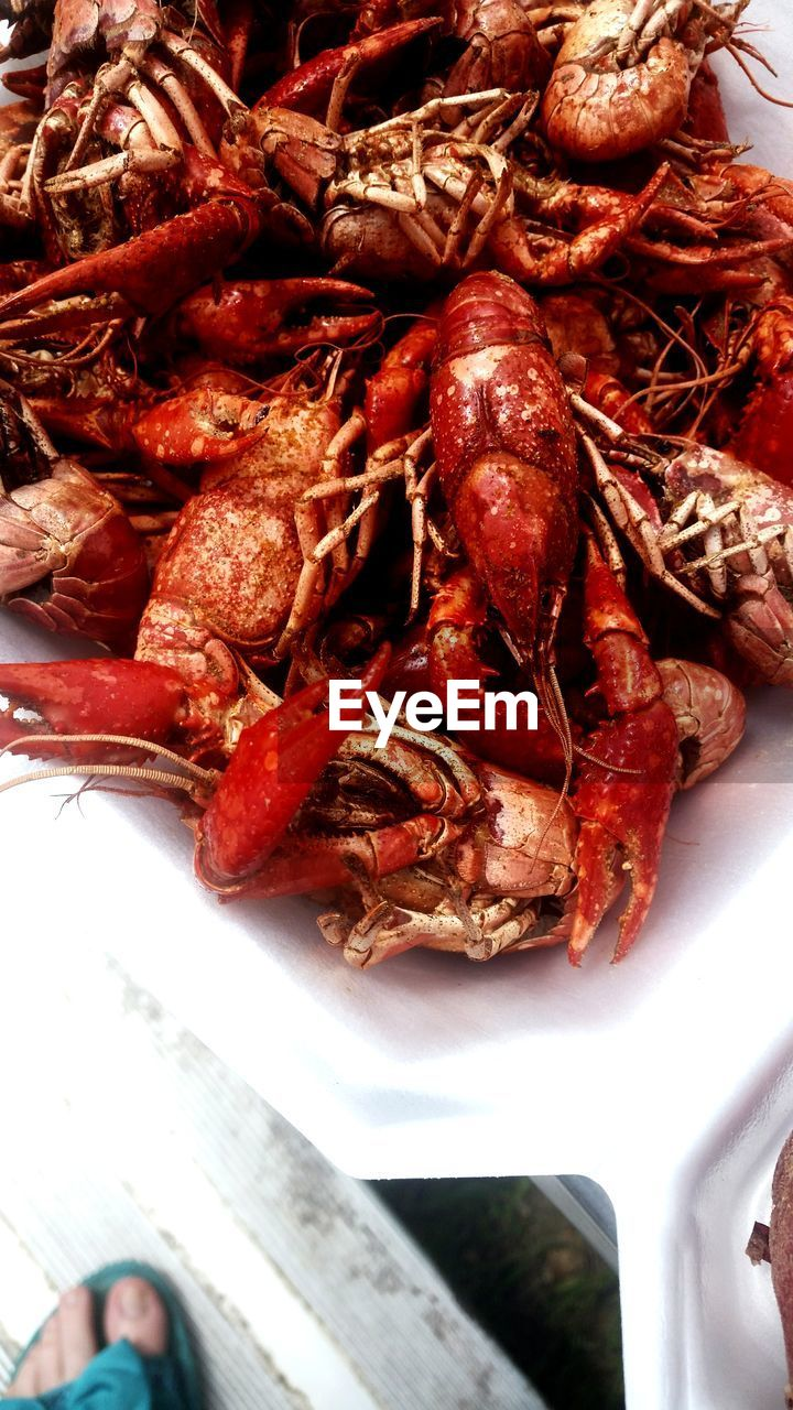 seafood, food, food and drink, lobster, freshness, healthy eating, prawn, plate, indoors, no people, close-up, red, cooked, ready-to-eat, day