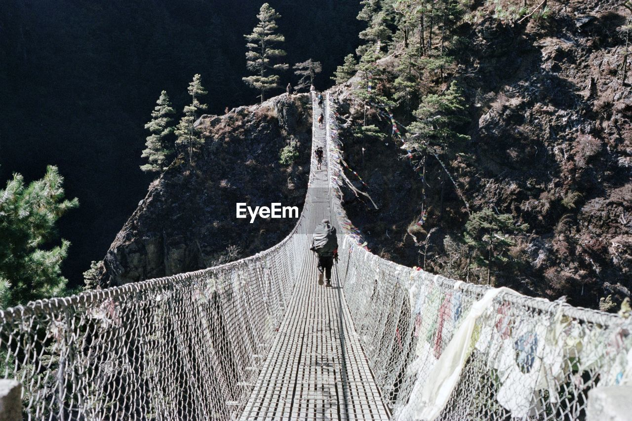 Rear View Of Person Walking On Footbridge Amidst Trees And Mountains