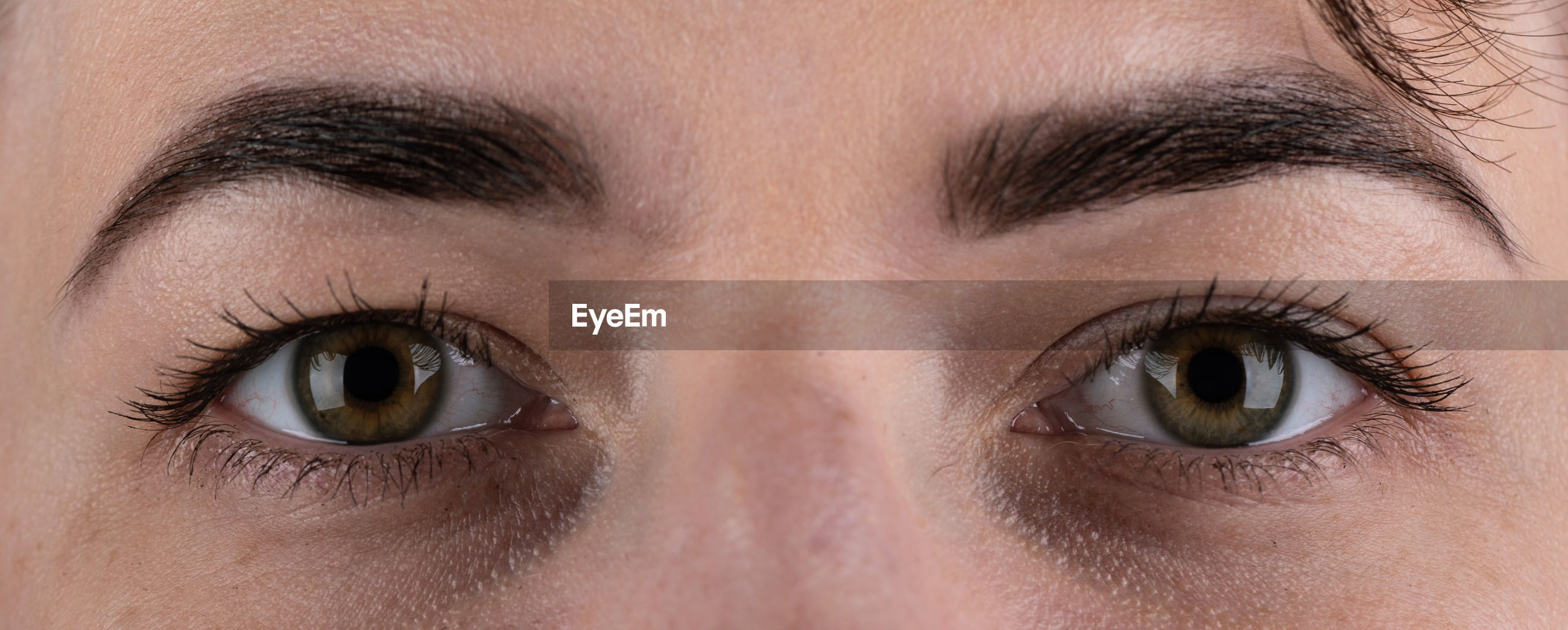 Open female green eyes with makeup with black eyebrows and black lashes. close up.