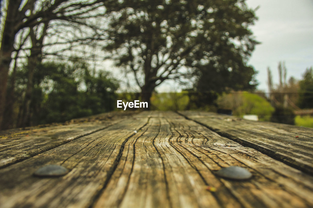 wood - material, tree, selective focus, no people, textured, day, pattern, wood, plant, outdoors, nature, close-up, surface level, diminishing perspective, plank, the way forward, focus on foreground, rough, direction, footpath, wood grain, bark