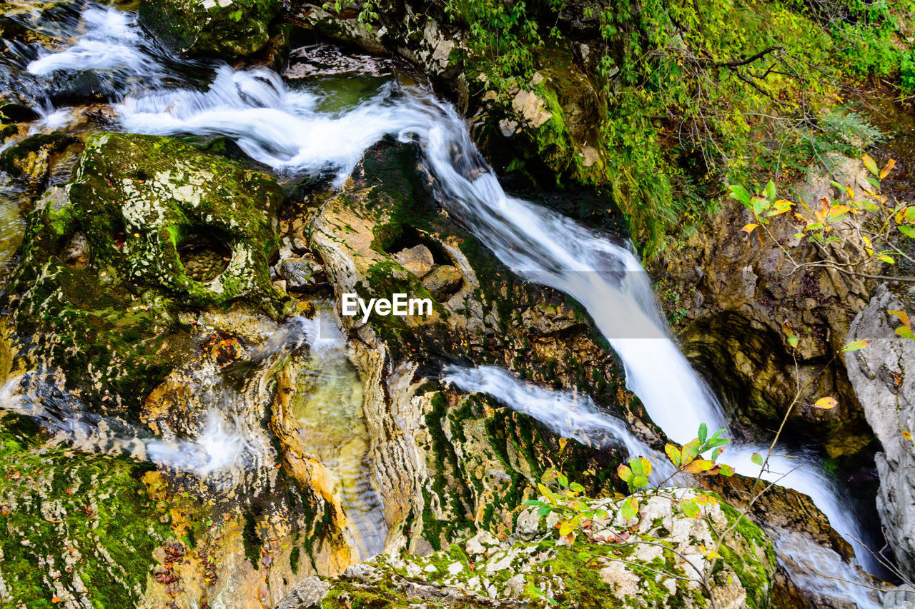 motion, water, tree, flowing water, moss, nature, plant, beauty in nature, no people, long exposure, land, forest, waterfall, day, rock, flowing, blurred motion, scenics - nature, rock - object, outdoors, stream - flowing water, falling water, running water