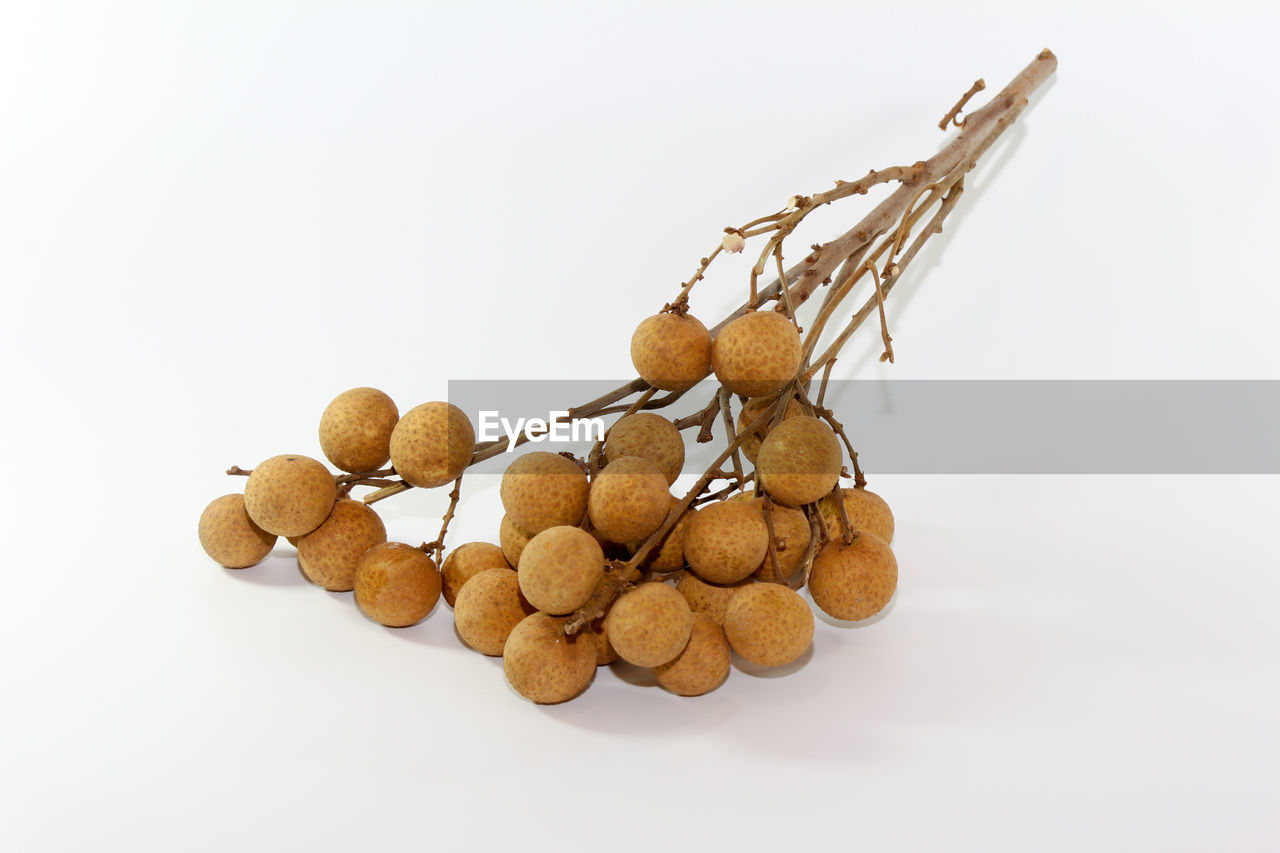 white background, studio shot, cut out, food and drink, food, close-up, no people, nut - food, healthy eating, freshness