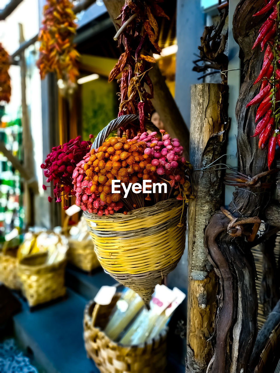 plant, freshness, hanging, no people, focus on foreground, close-up, food, food and drink, nature, day, flower, container, flowering plant, market, for sale, basket, wellbeing, still life, market stall, healthy eating, outdoors, retail display