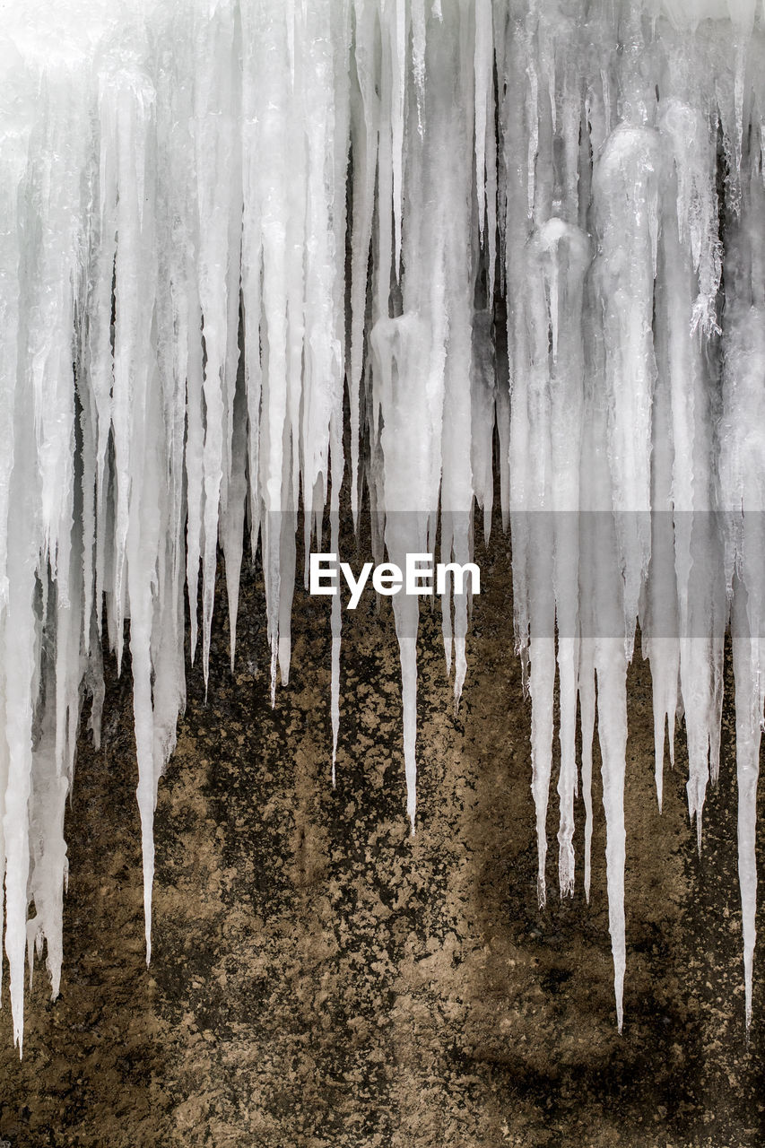 ice, nature, no people, icicle, environment, cold temperature, tranquility, water, hanging, land, outdoors, frozen, tranquil scene, beauty in nature, day, winter, tree, trunk