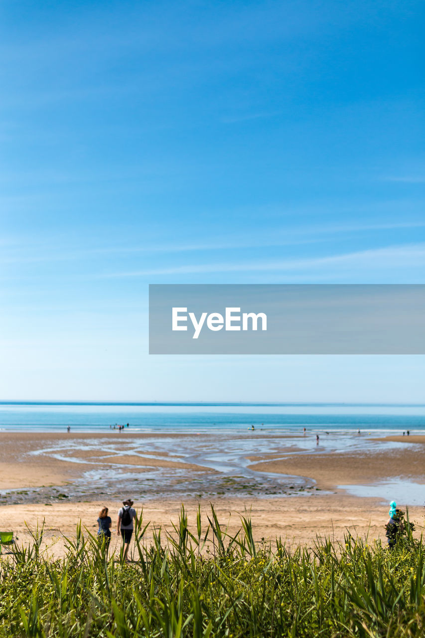 water, land, sky, beach, beauty in nature, sea, horizon over water, horizon, scenics - nature, nature, day, group of people, plant, real people, grass, men, blue, leisure activity, lifestyles