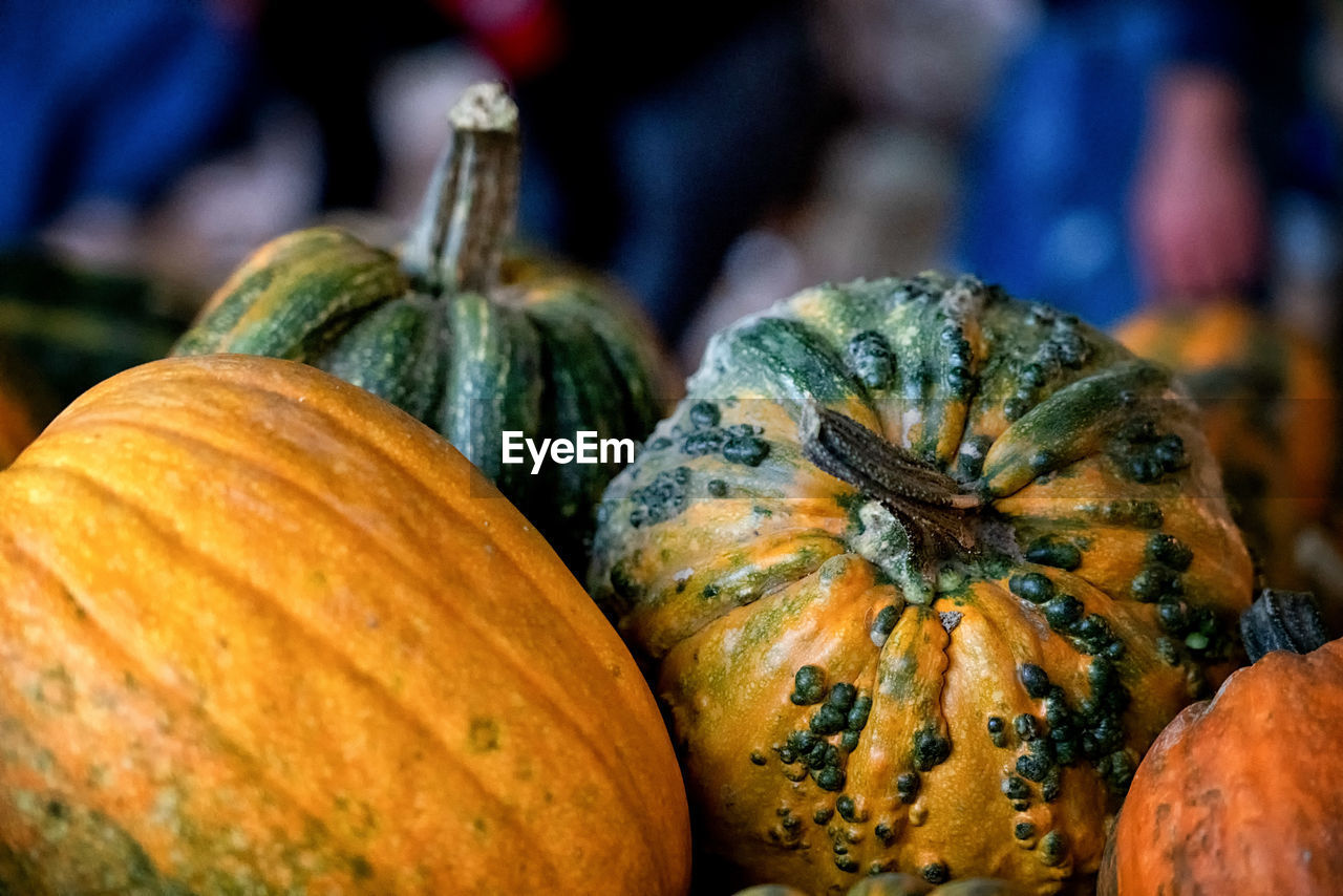 food and drink, food, pumpkin, healthy eating, freshness, vegetable, close-up, wellbeing, focus on foreground, market, orange color, squash - vegetable, no people, gourd, still life, day, raw food, autumn, market stall, outdoors, ripe
