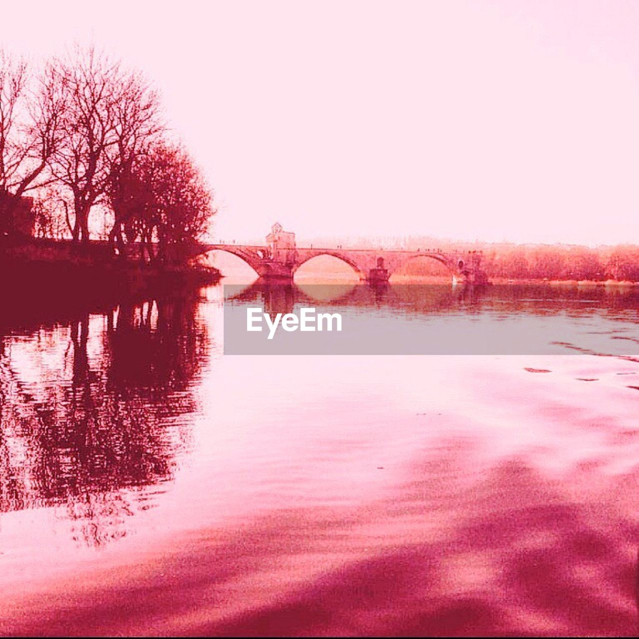 water, tree, reflection, nature, no people, outdoors, beauty in nature, river, pink color, tranquility, bridge - man made structure, scenics, sky, day, clear sky