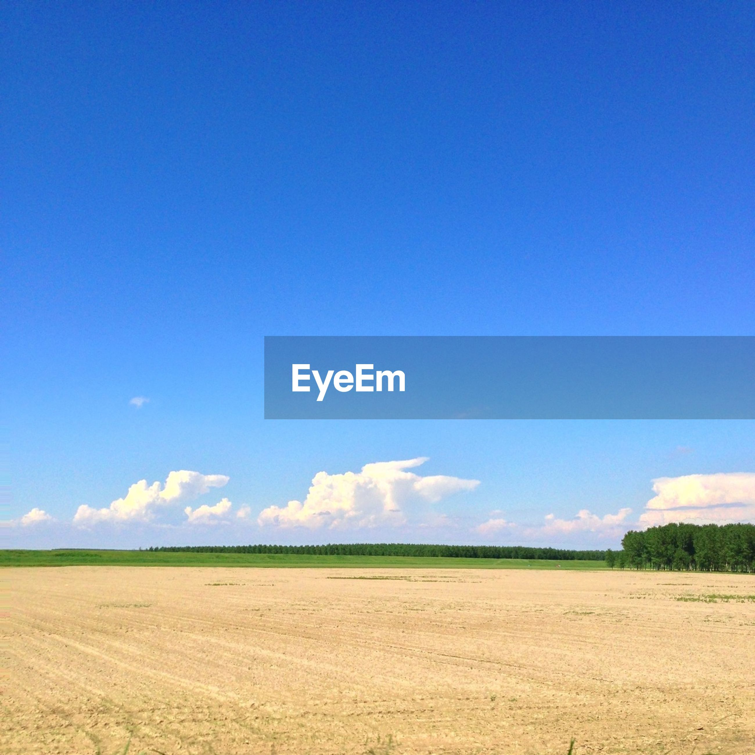 blue, landscape, tranquil scene, tranquility, field, scenics, beauty in nature, copy space, sky, nature, horizon over land, clear sky, grass, rural scene, remote, non-urban scene, day, idyllic, agriculture, outdoors