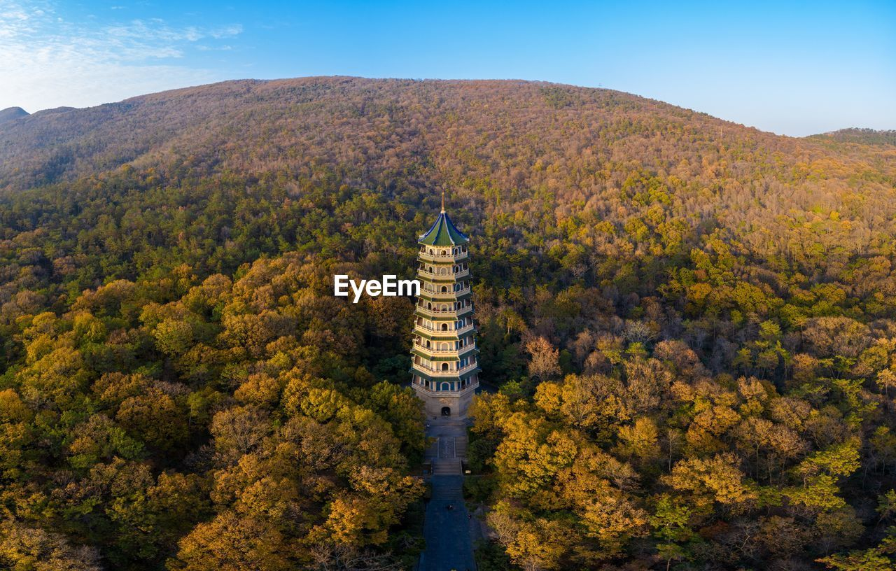 Aerial view of pagoda amidst trees