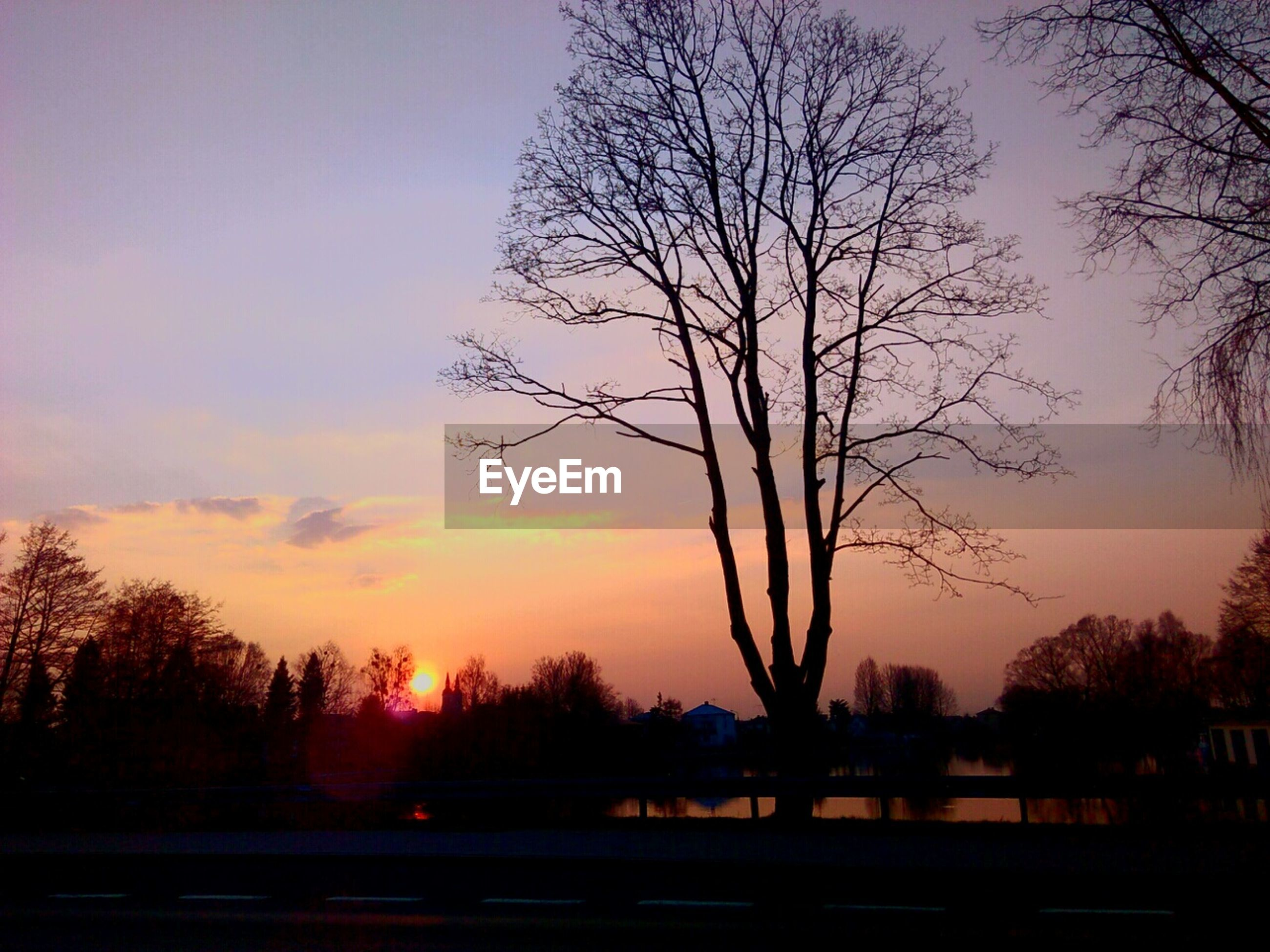 sunset, silhouette, tree, bare tree, tranquility, tranquil scene, scenics, sky, beauty in nature, nature, branch, orange color, idyllic, water, landscape, outdoors, dusk, no people, lake, non-urban scene
