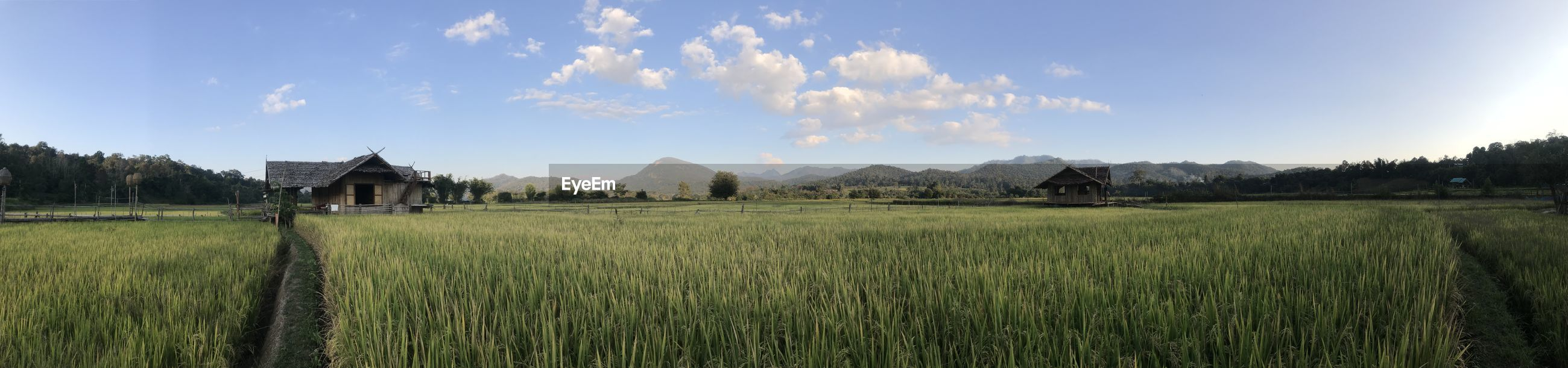 Panoramic shot of agricultural field against sky