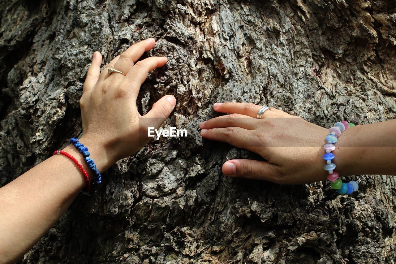 real people, rock - object, rock climbing, two people, tree trunk, leisure activity, human body part, togetherness, day, outdoors, human hand, adventure, childhood, nature, close-up, climbing, adult, people