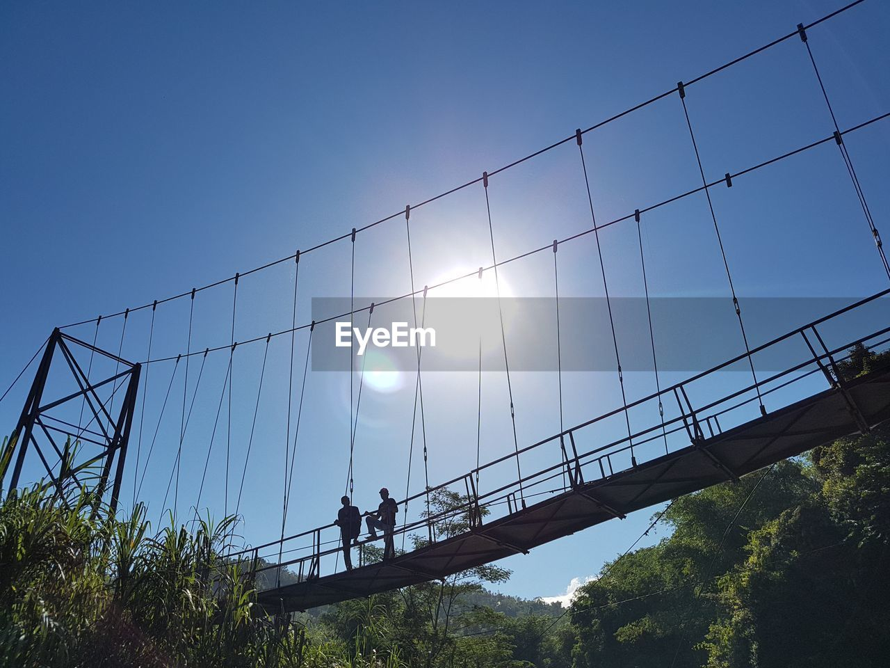low angle view, sunlight, men, sport, real people, clear sky, day, sun, outdoors, bridge - man made structure, leisure activity, built structure, architecture, adventure, sky, blue, group of people, women, tree, nature, sports team, people