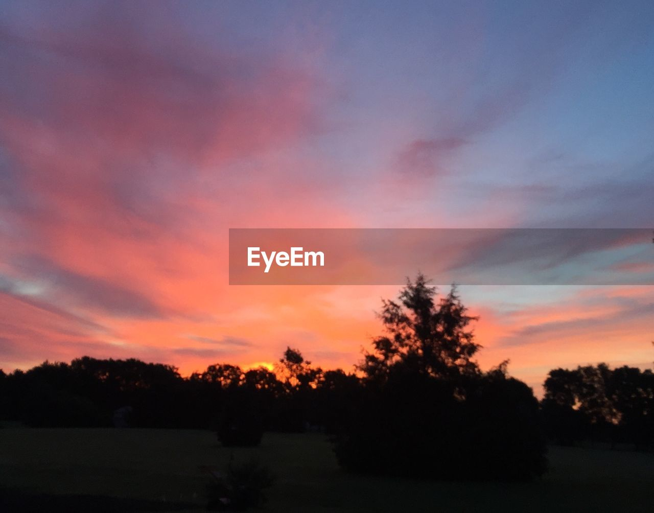 sunset, sky, tree, plant, silhouette, beauty in nature, cloud - sky, tranquility, scenics - nature, tranquil scene, orange color, nature, no people, landscape, environment, outdoors, growth, field, non-urban scene, idyllic, romantic sky