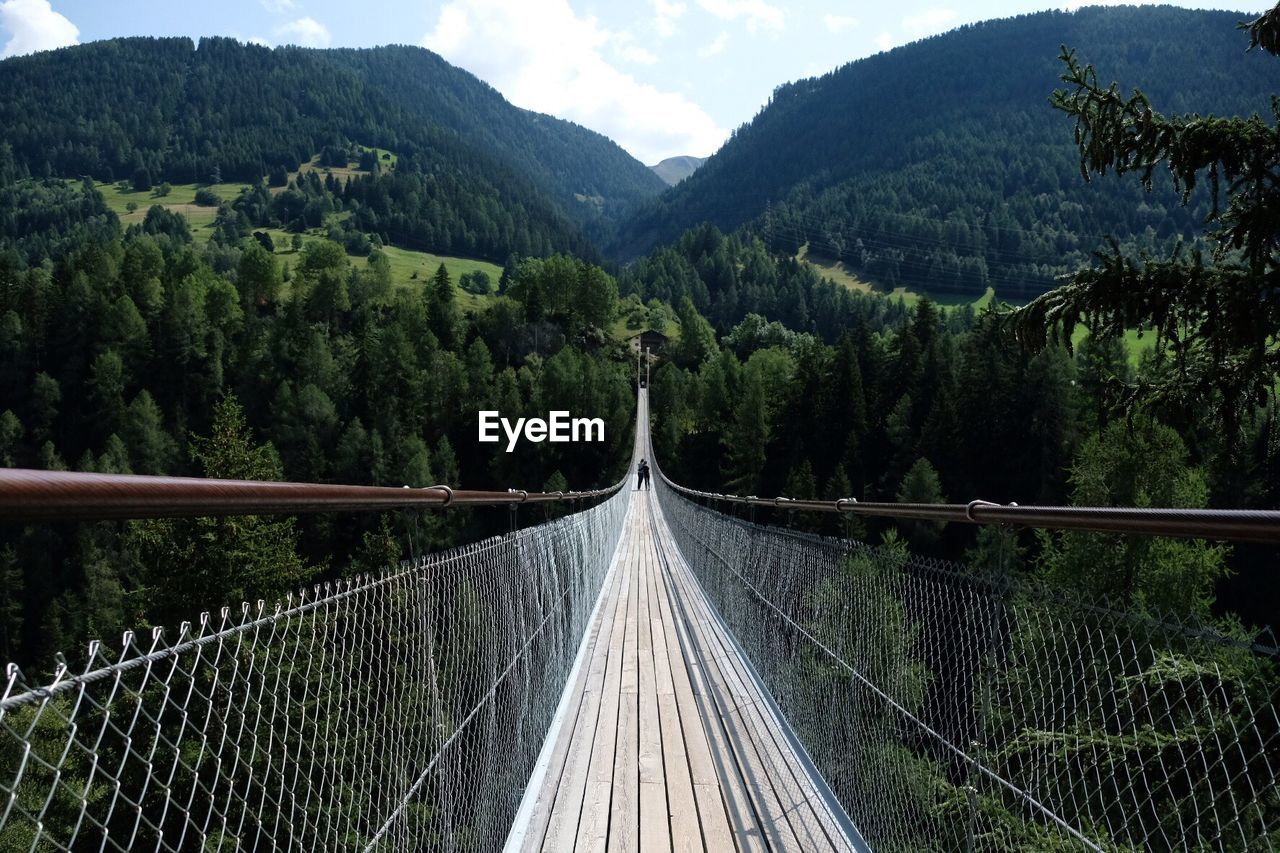 tree, plant, bridge, mountain, nature, connection, the way forward, bridge - man made structure, scenics - nature, built structure, footbridge, transportation, beauty in nature, forest, day, direction, tranquility, growth, no people, rope bridge, diminishing perspective, outdoors