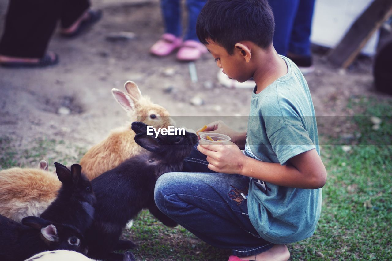 childhood, child, mammal, boys, domestic animals, vertebrate, real people, domestic, pets, one animal, males, men, casual clothing, one person, leisure activity, three quarter length, cute, innocence, outdoors, care
