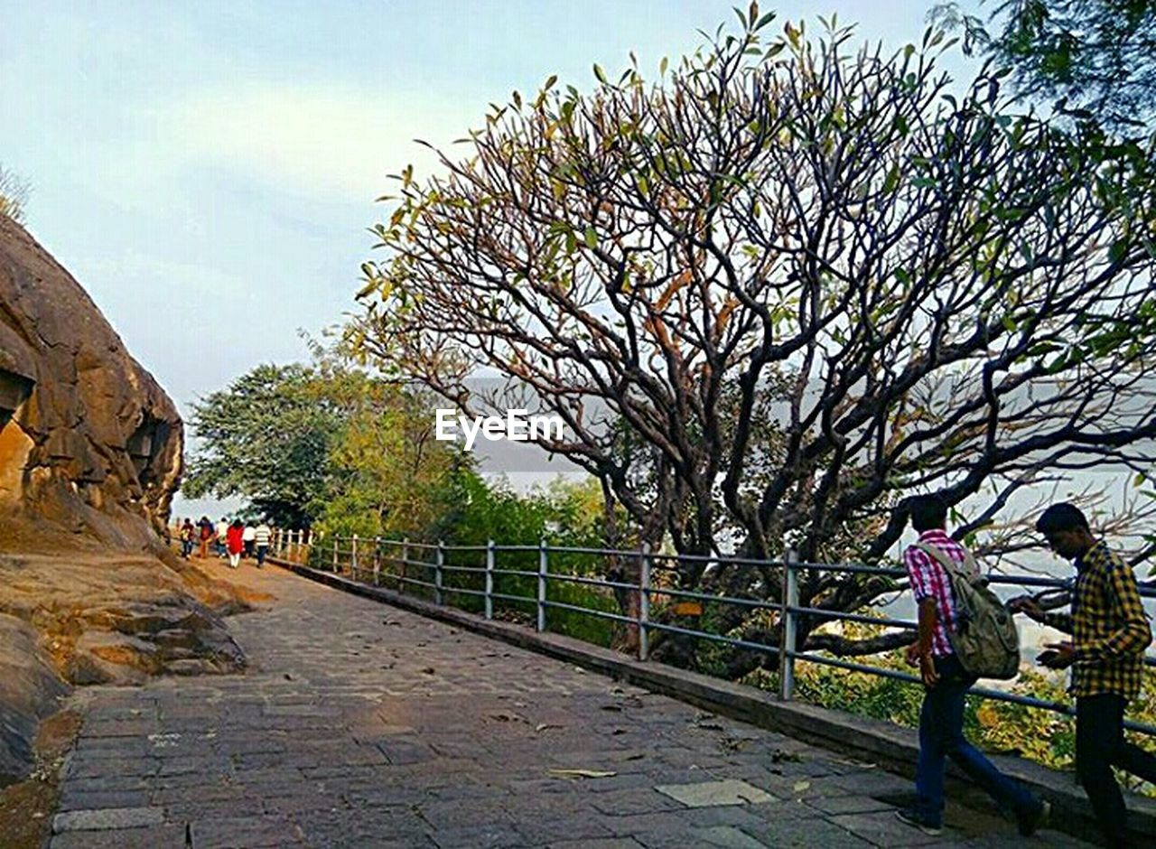 tree, sky, full length, walking, cloud - sky, outdoors, bare tree, people, day, adult, built structure, men, travel destinations, adults only, nature, real people, women, architecture, branch, beauty in nature, city, building exterior, only women, flower