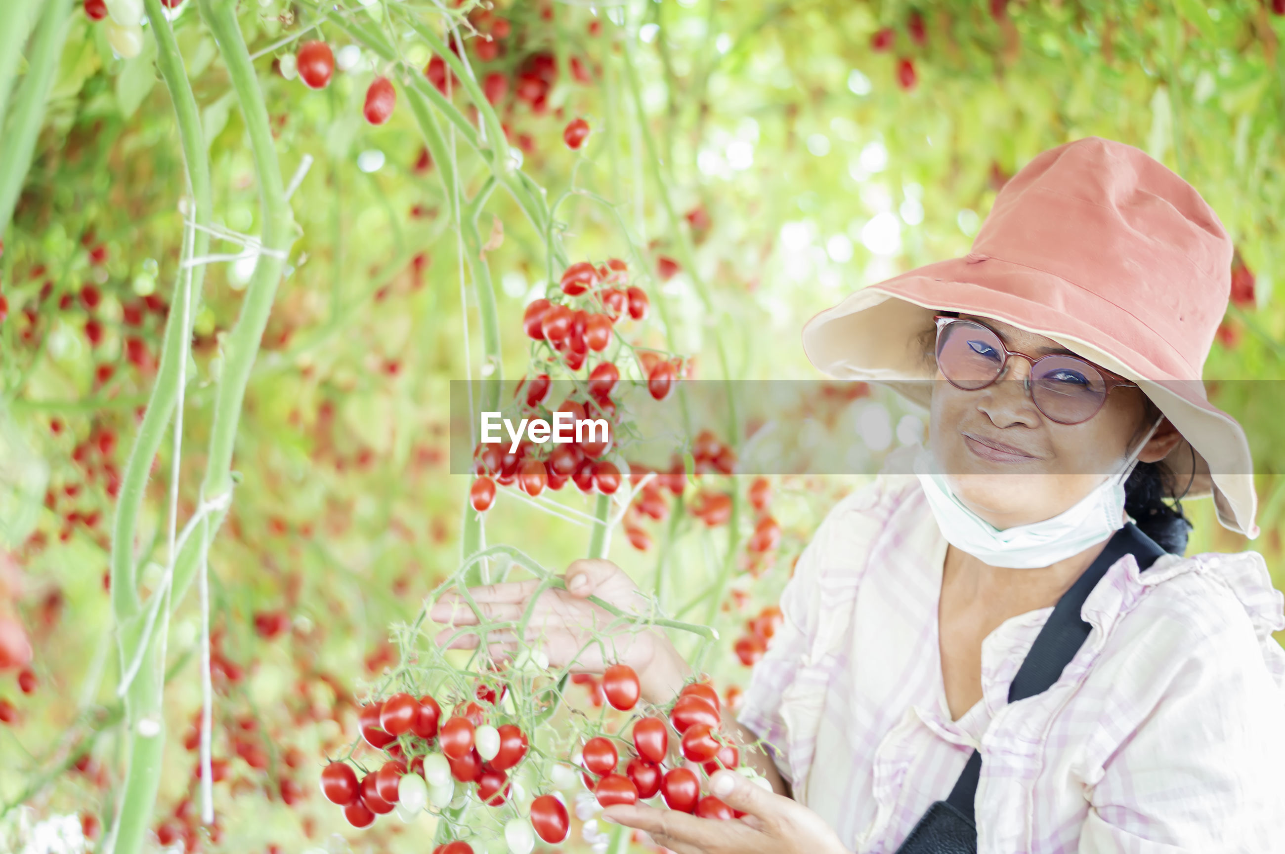 Portrait of woman showing cherry tomatoes on plant