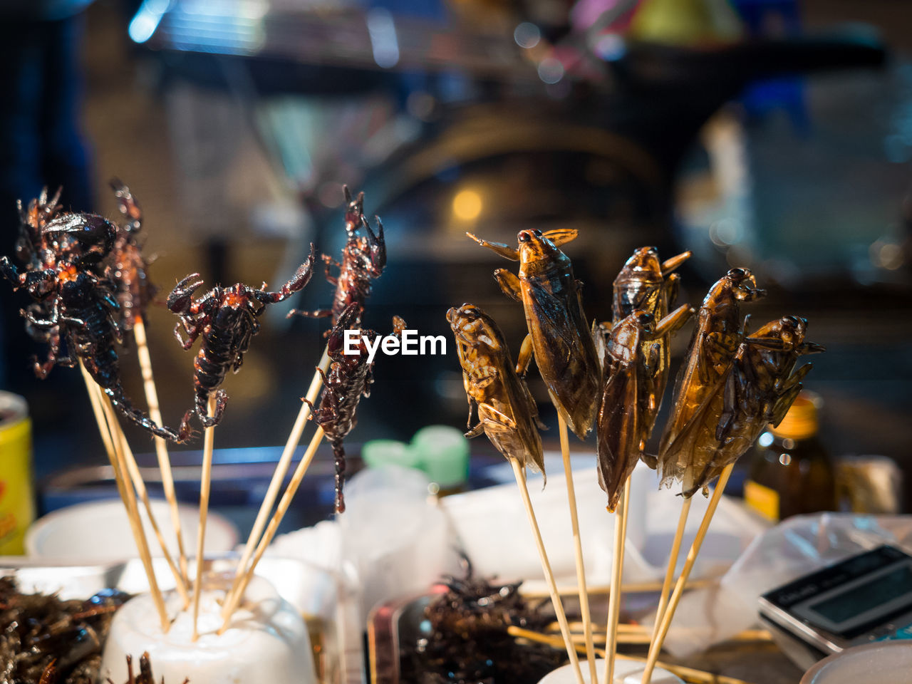 Close-Up Of Fried Cockroaches And Scorpions On Skewers For Sale As Snack In Chinatown, Bangkok, Thailand