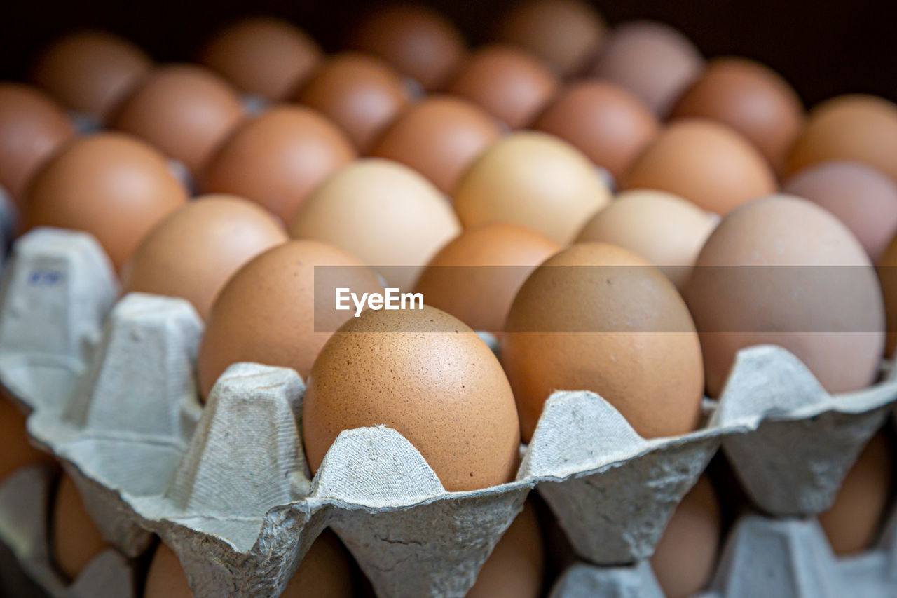 egg, food, food and drink, large group of objects, freshness, egg carton, wellbeing, healthy eating, in a row, still life, arrangement, raw food, brown, no people, indoors, order, selective focus, abundance, fragility, container, carton, retail display, tray