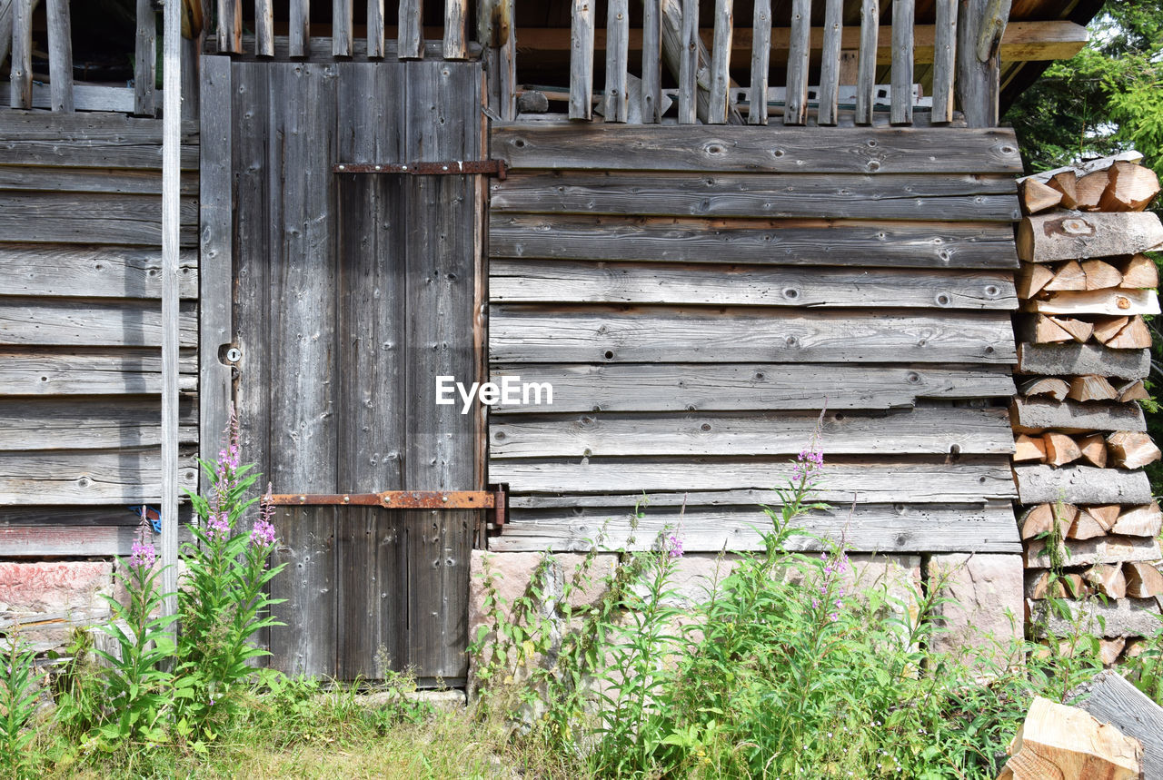 wood - material, architecture, day, built structure, no people, building exterior, plant, outdoors, old, weathered, wood, building, nature, entrance, house, door, wall - building feature, growth, metal, wall, iron