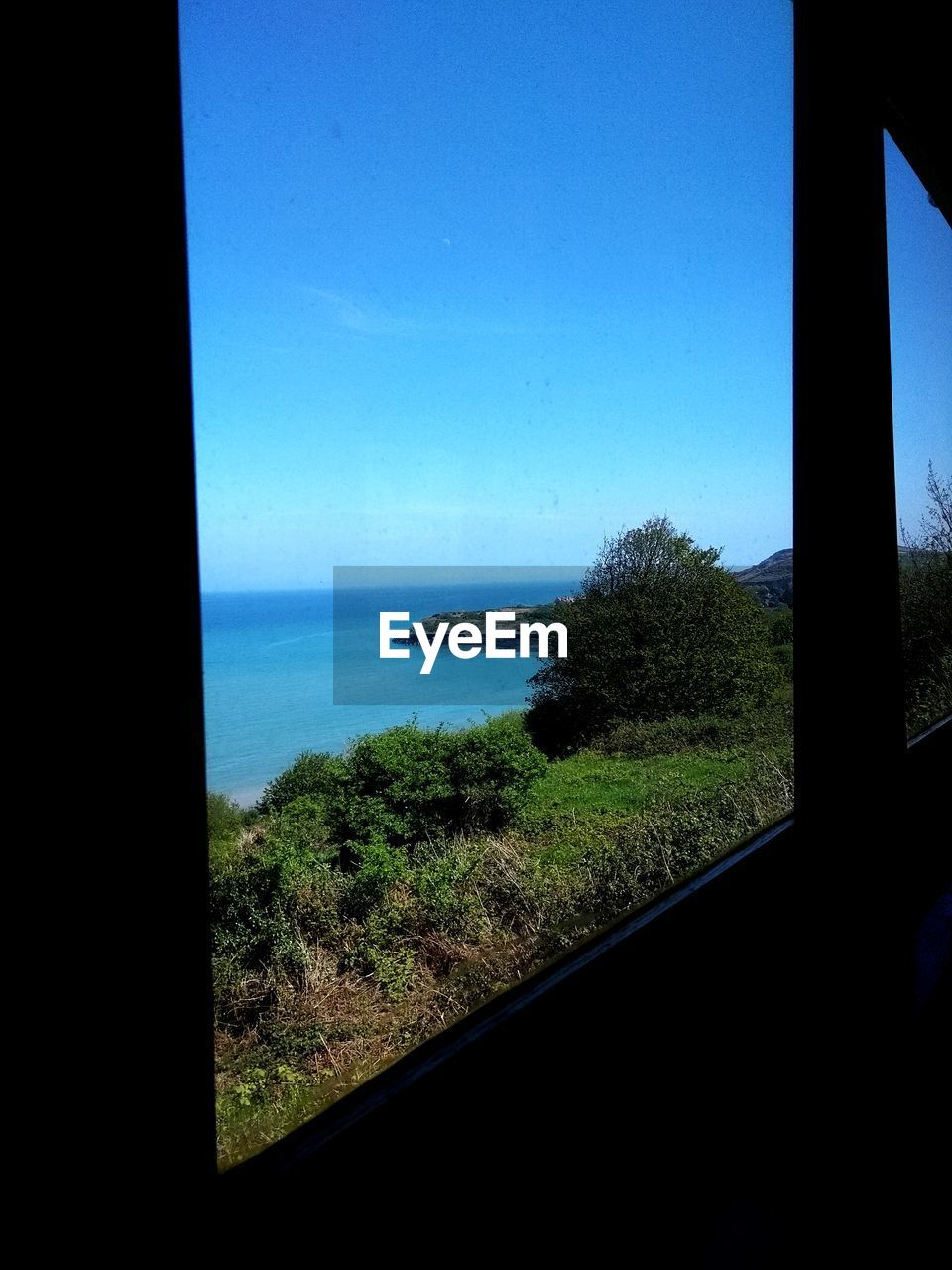window, sea, blue, tranquil scene, no people, nature, water, scenics, horizon over water, tree, sky, tranquility, clear sky, day, beauty in nature, indoors, grass, close-up