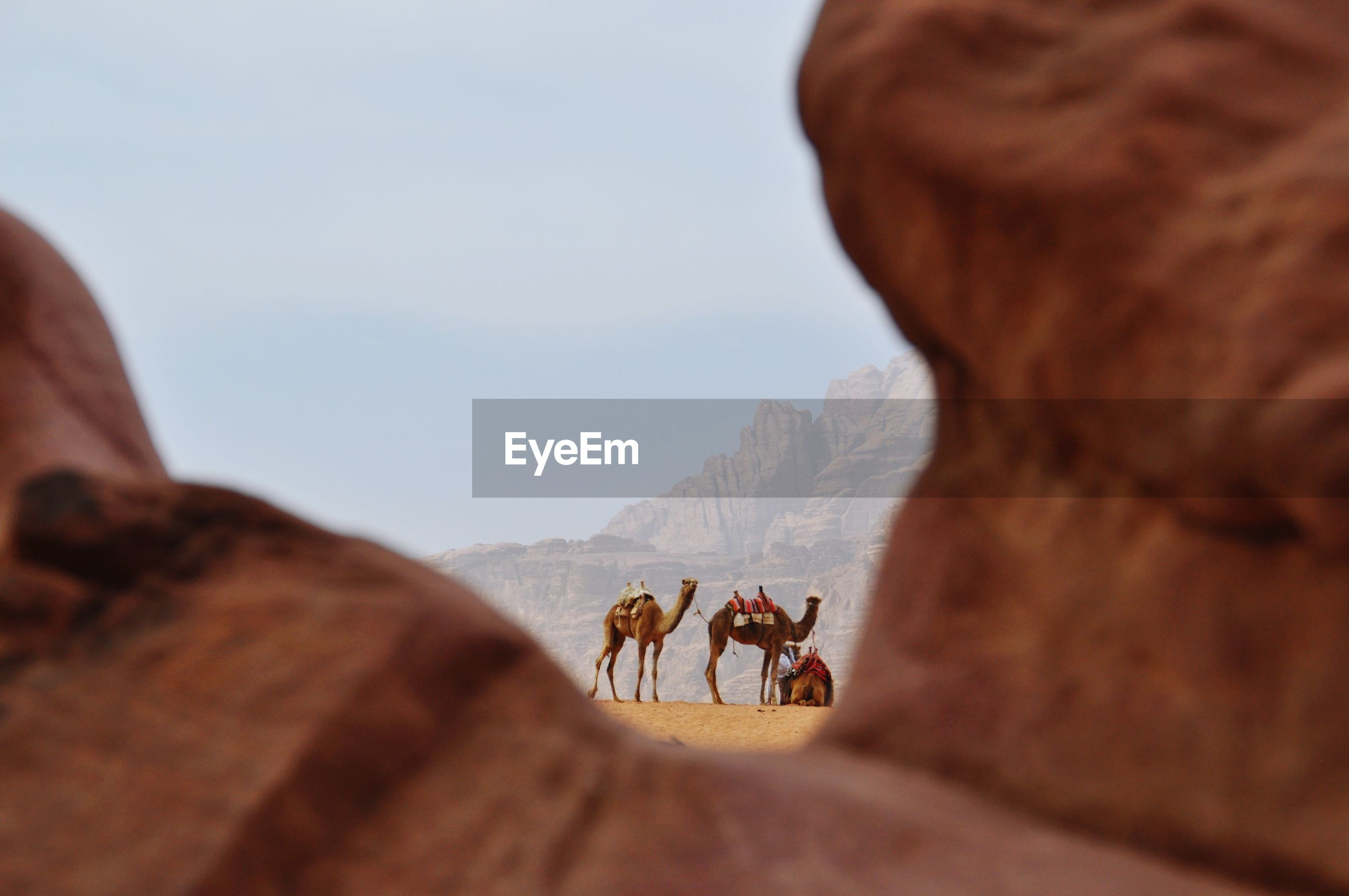 Man riding camel on rock against sky