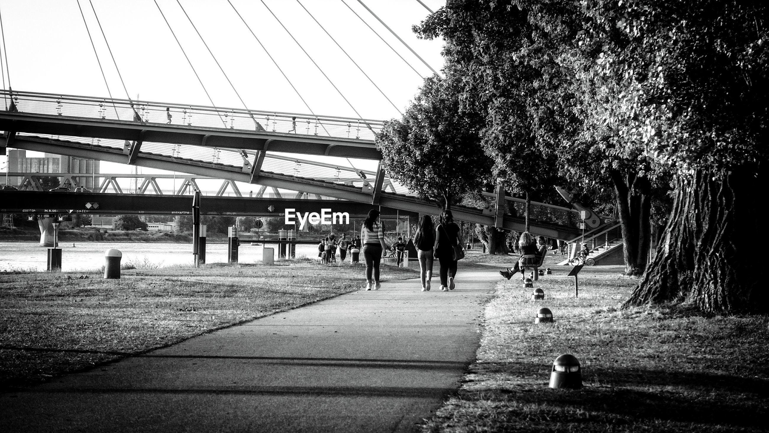 Rear view of friends walking on promenade by river
