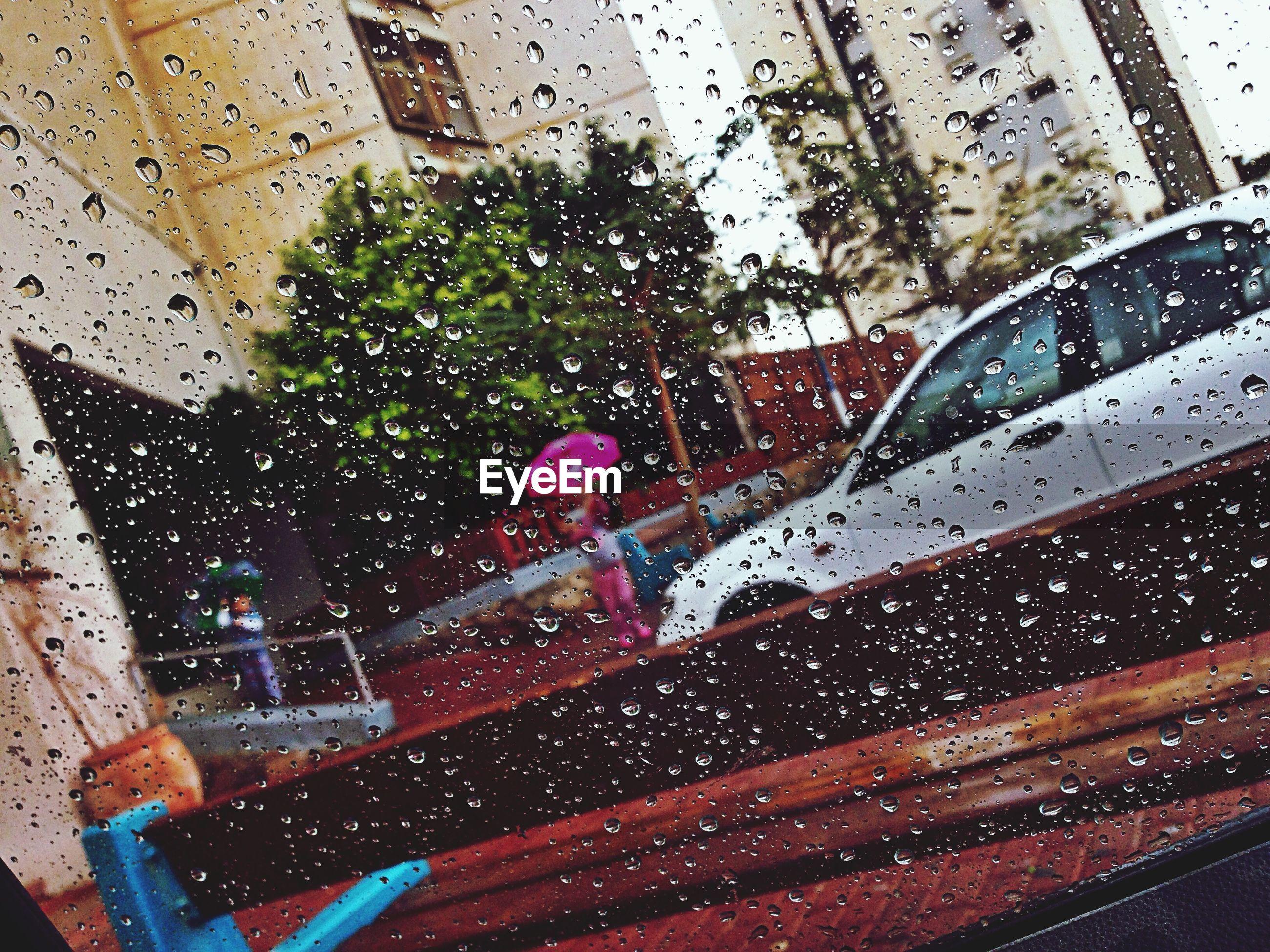 drop, water, wet, transparent, glass - material, rain, window, season, raindrop, indoors, glass, car, fragility, weather, building exterior, built structure, monsoon, day, architecture, rainy season