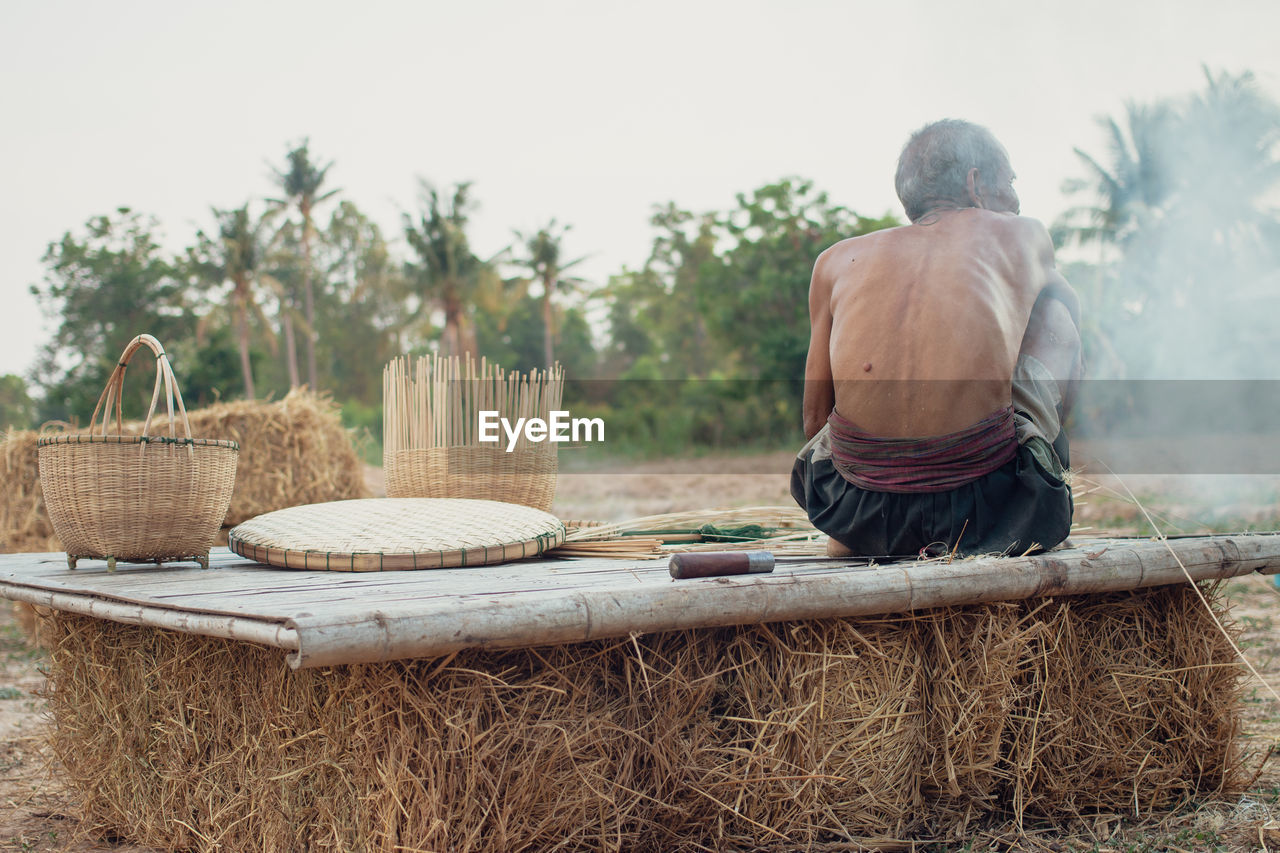 rear view, men, day, one person, real people, tree, plant, basket, nature, clothing, adult, lifestyles, working, males, occupation, shirtless, casual clothing, wicker, outdoors, farmer