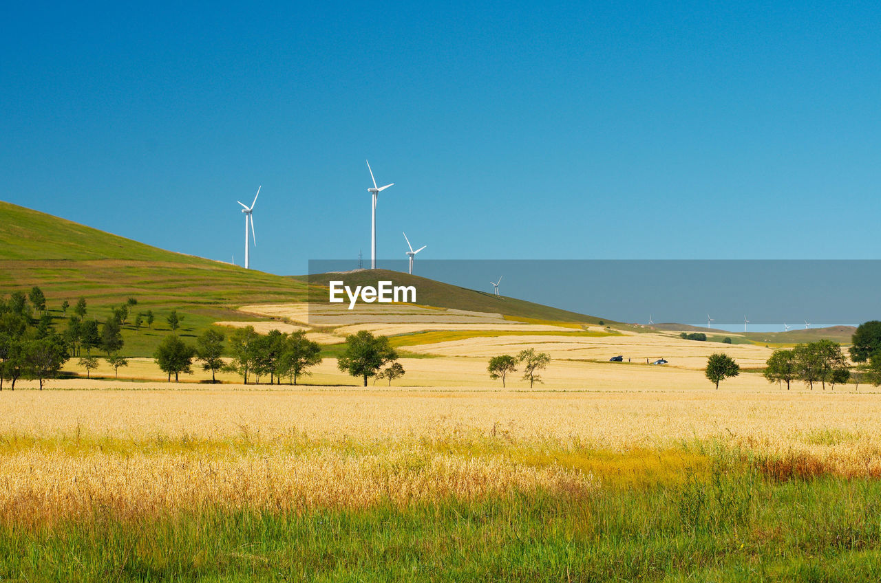 environment, turbine, wind turbine, renewable energy, landscape, sky, environmental conservation, alternative energy, fuel and power generation, land, wind power, field, beauty in nature, scenics - nature, rural scene, clear sky, plant, grass, tranquil scene, tranquility, no people, outdoors, sustainable resources