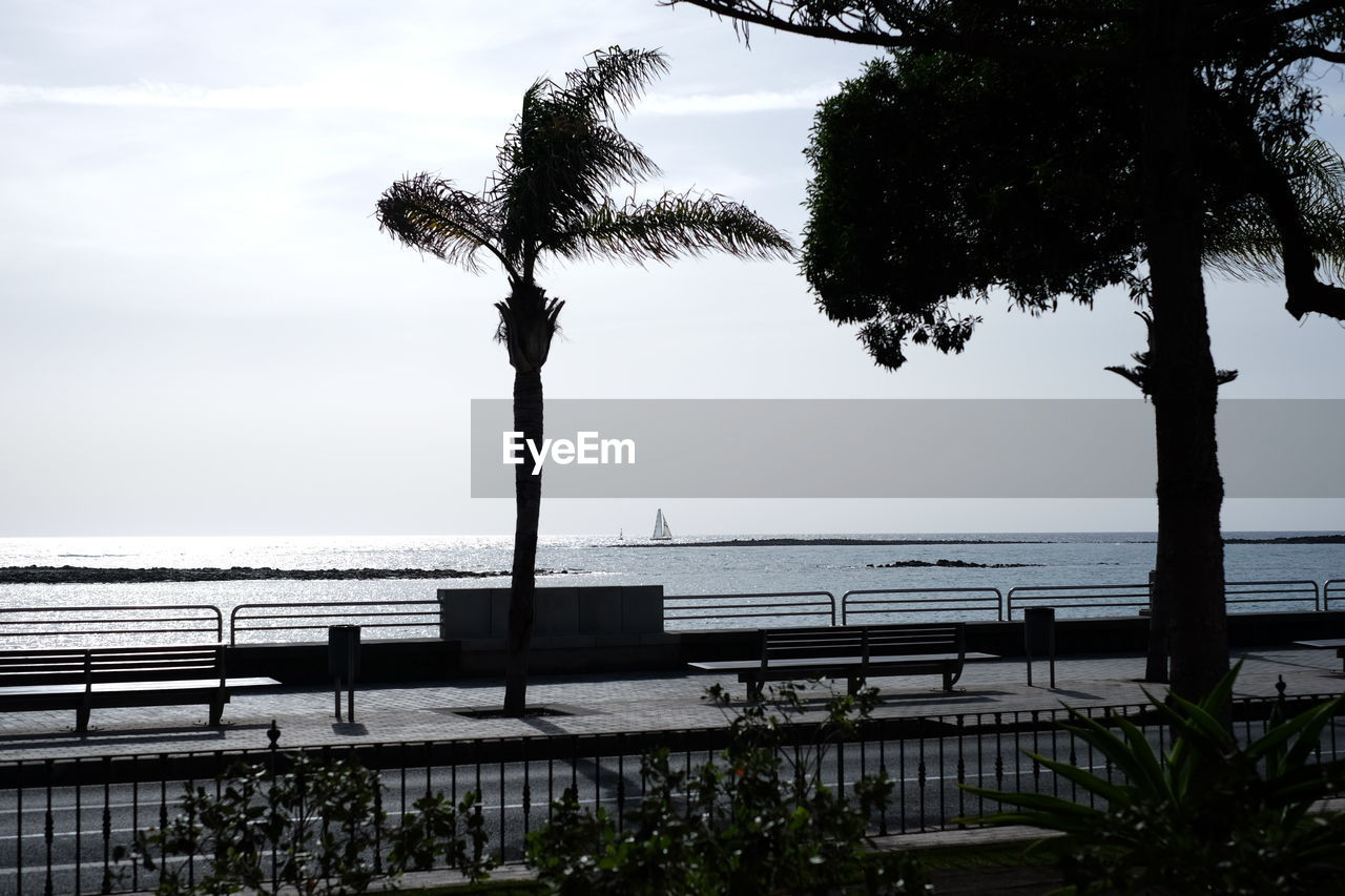 Benches And Trees On Promenade By Sea Against Sky