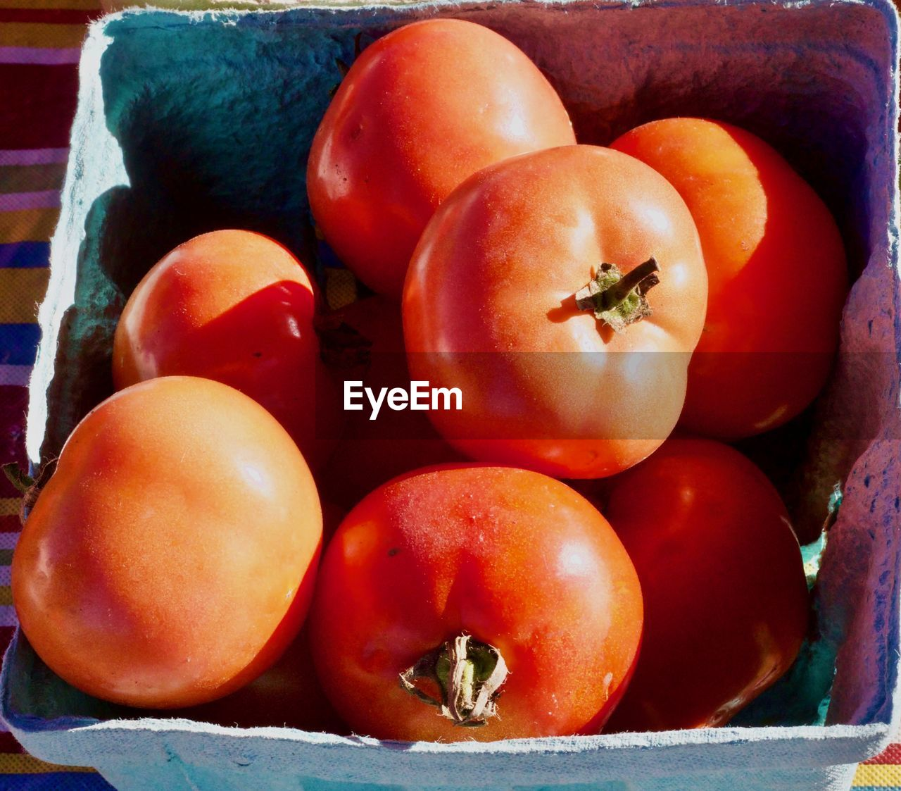 HIGH ANGLE VIEW OF TOMATOES AND FRUITS