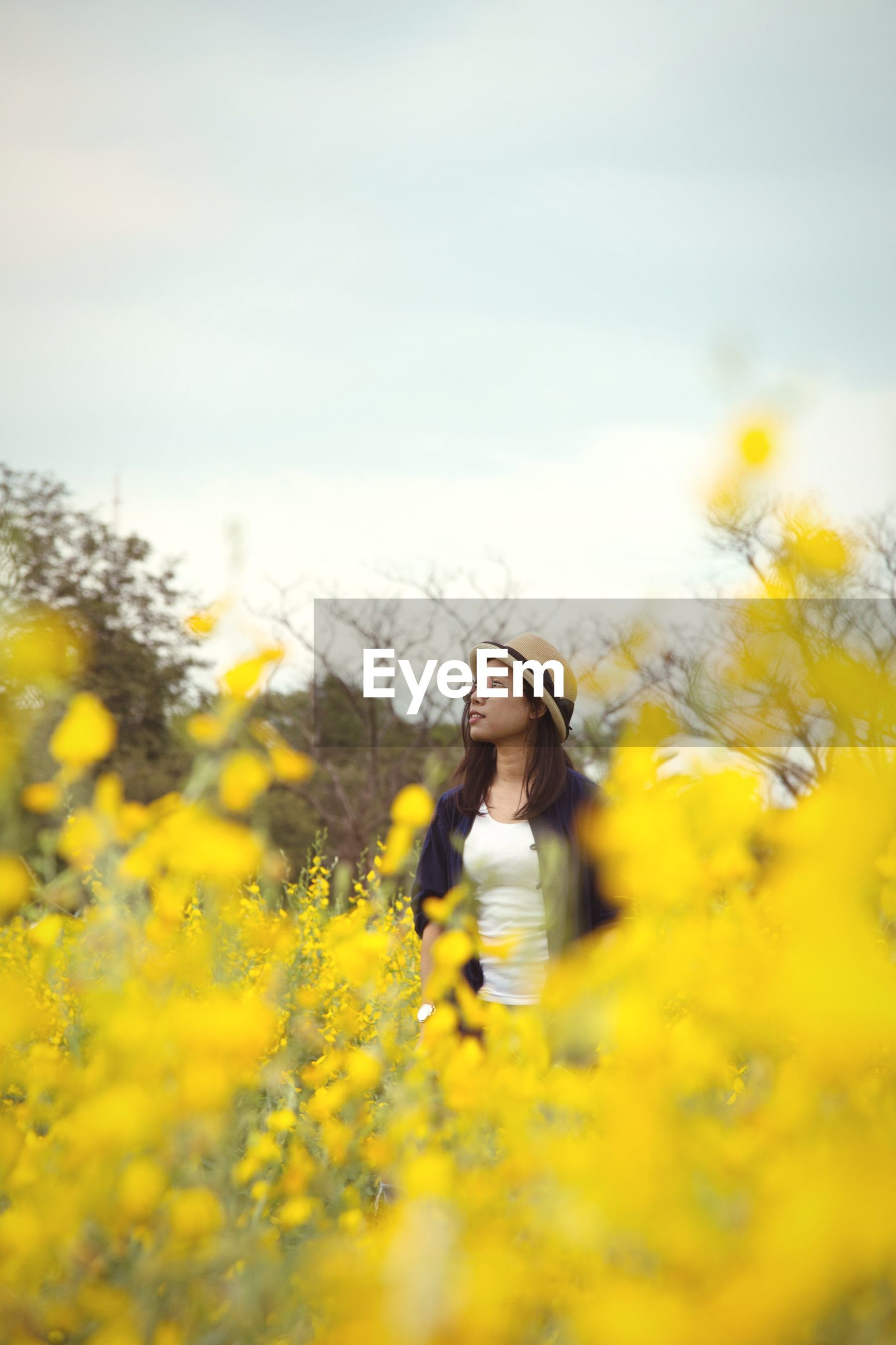 Woman looking away while standing amidst yellow flowers on field