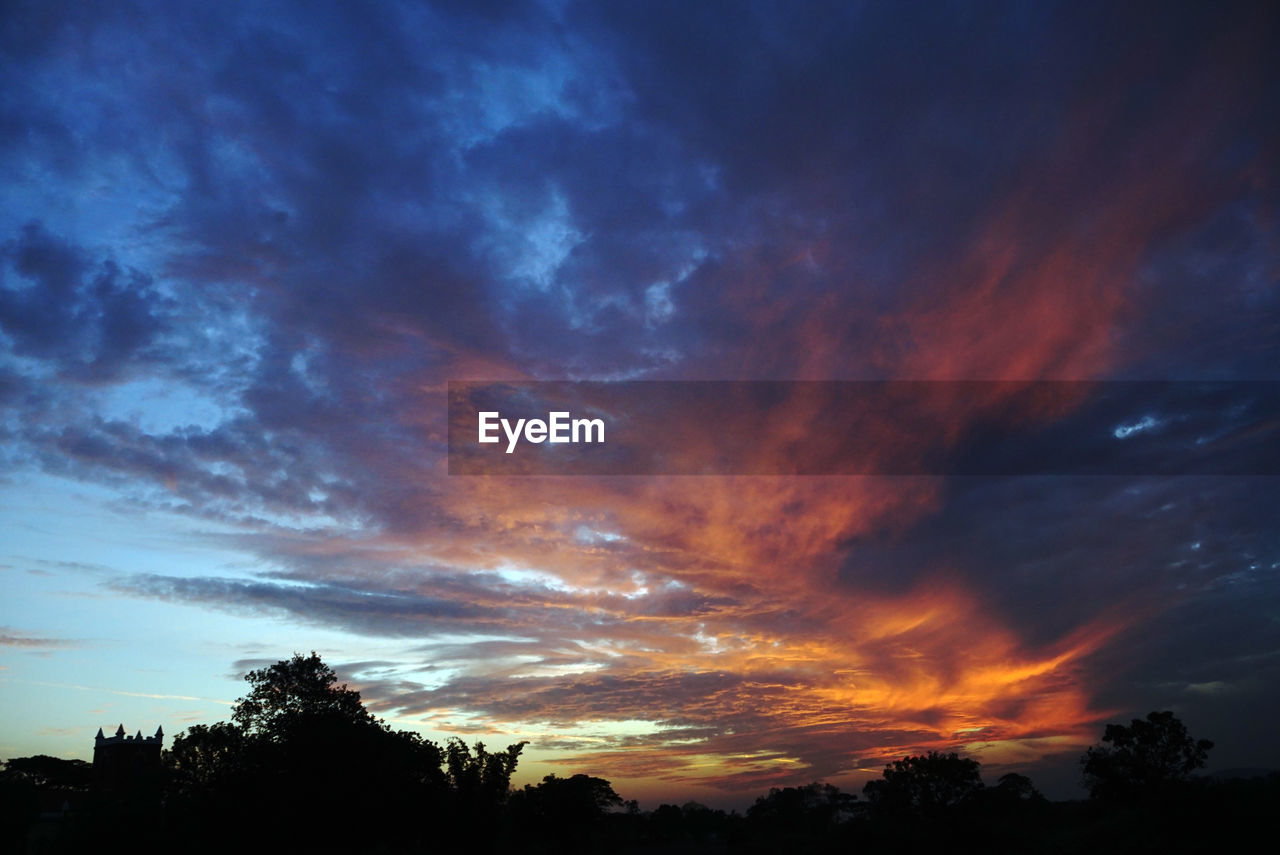 sky, cloud - sky, sunset, tree, beauty in nature, scenics - nature, silhouette, plant, tranquility, tranquil scene, nature, orange color, no people, low angle view, idyllic, dramatic sky, outdoors, non-urban scene, astronomy, growth