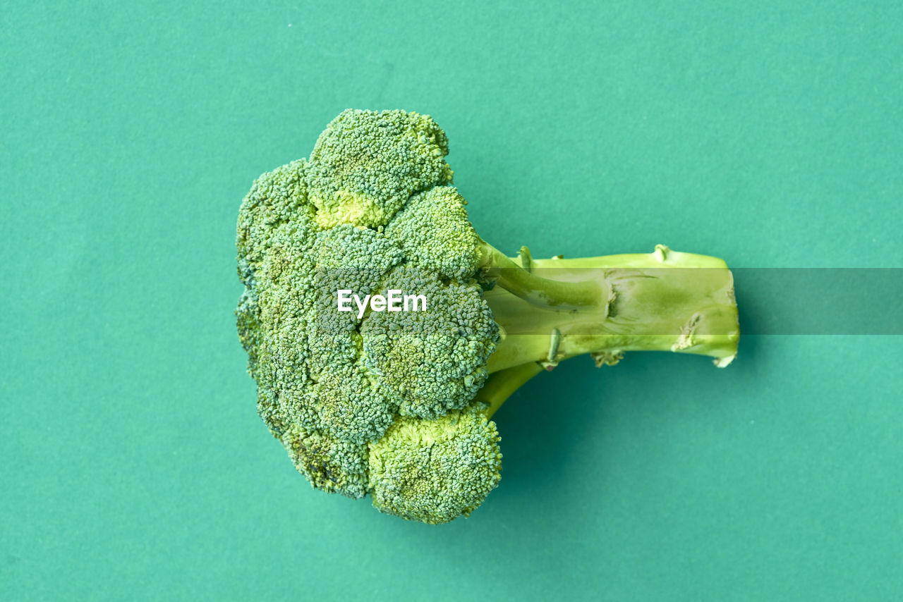 Directly above shot of broccoli on green background
